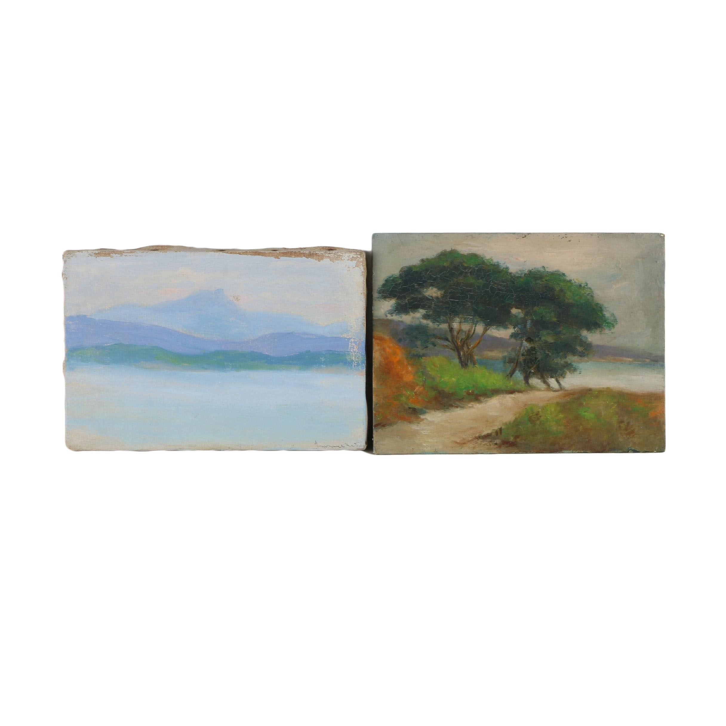 Pair of Oil Paintings of Landscapes