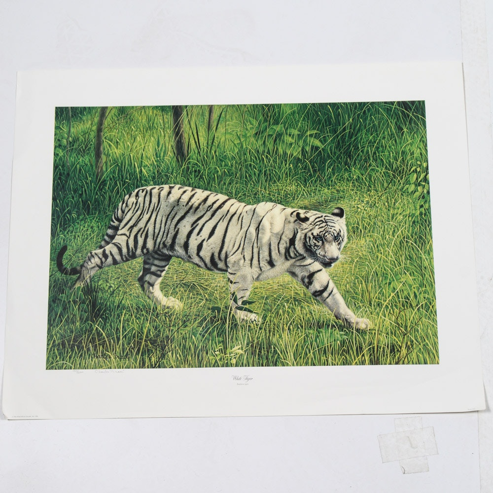 "Charles Frace Signed Offset Lithograph ""White Tiger"""