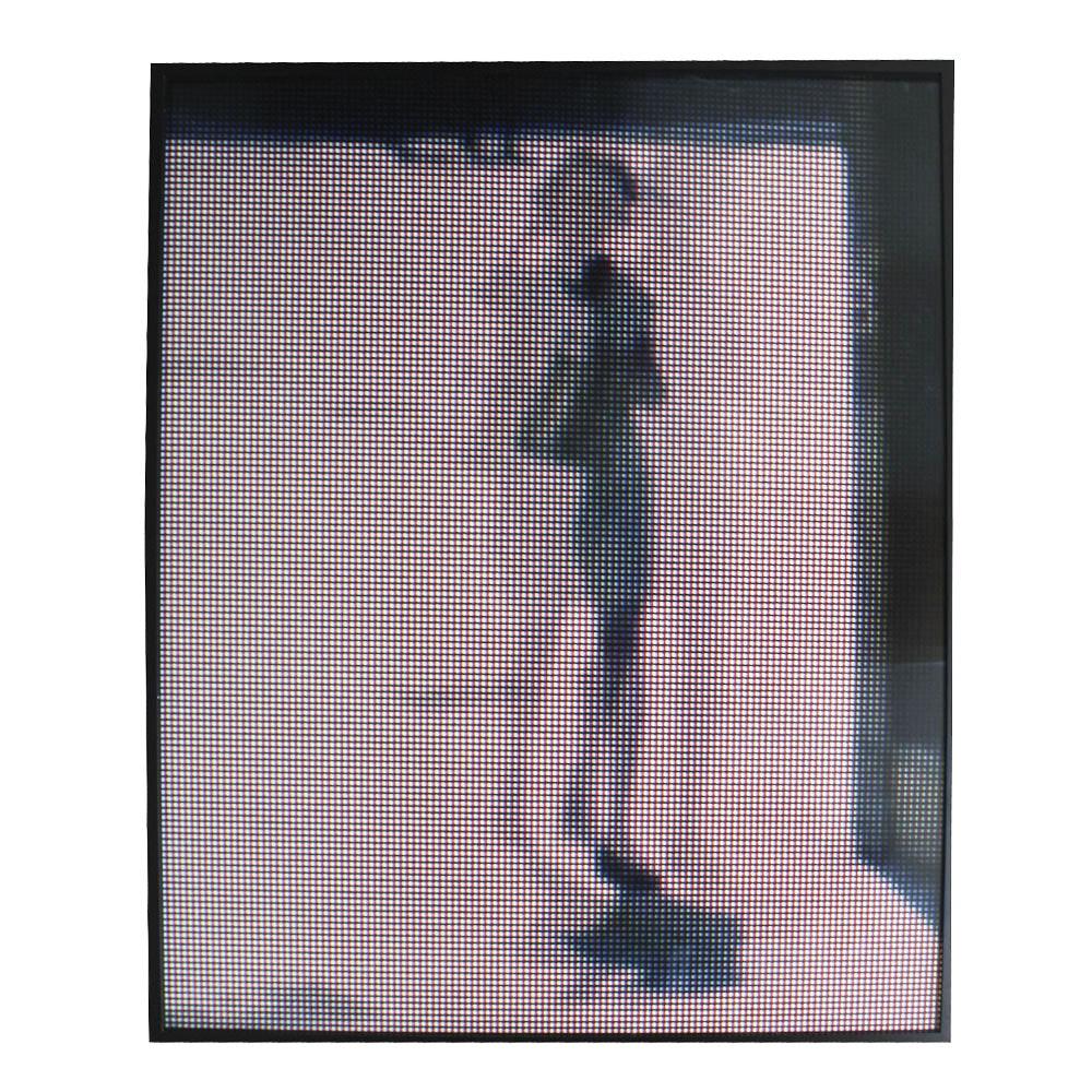 Framed Offset Lithograph of a Figure