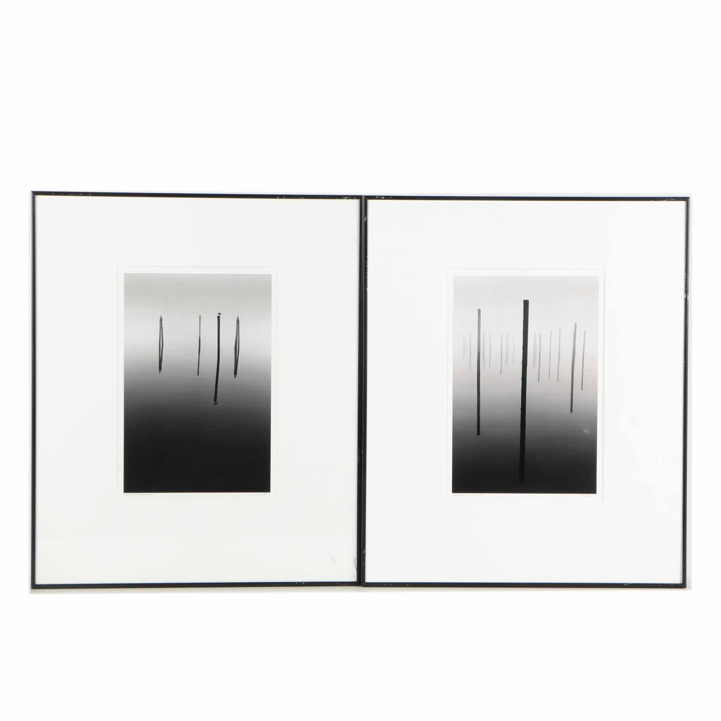 """Black and White Photographs """"Vertical Dreams #2 and #3"""""""
