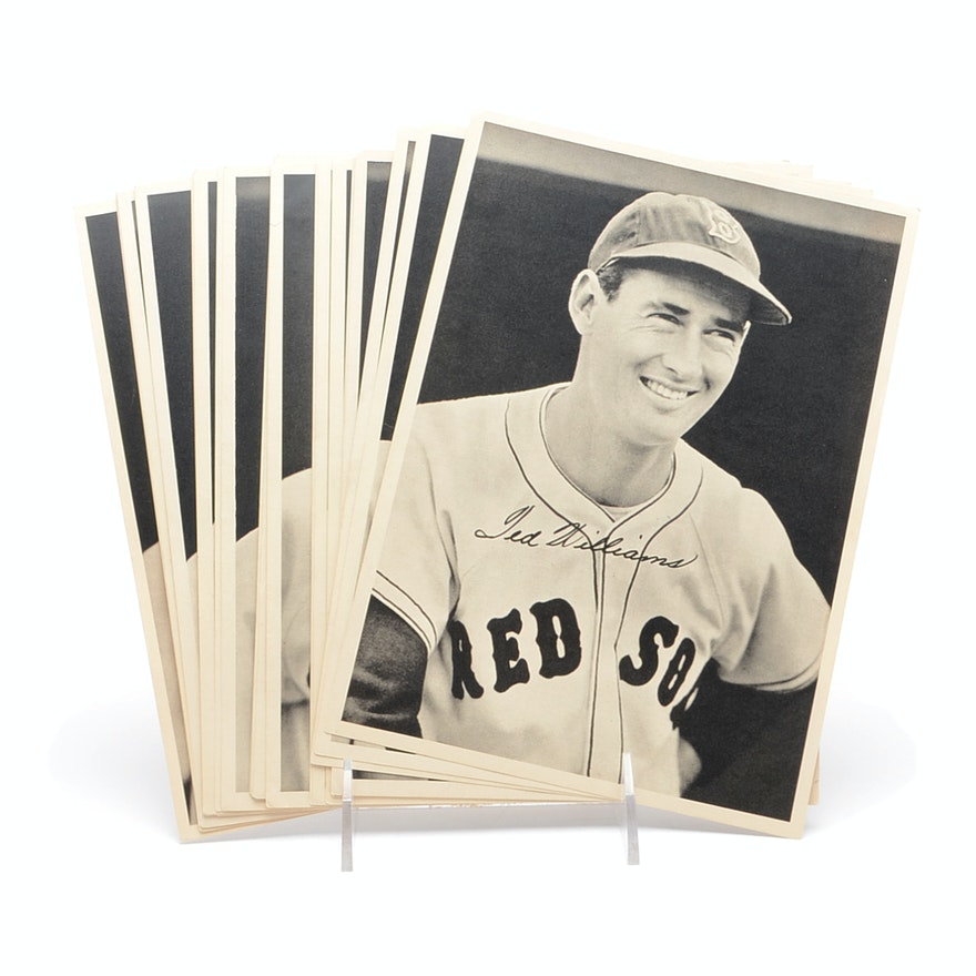46b68ff8a 1947-1948 Boston Red Sox Photo Pack With Original Envelope Ted Williams :  EBTH