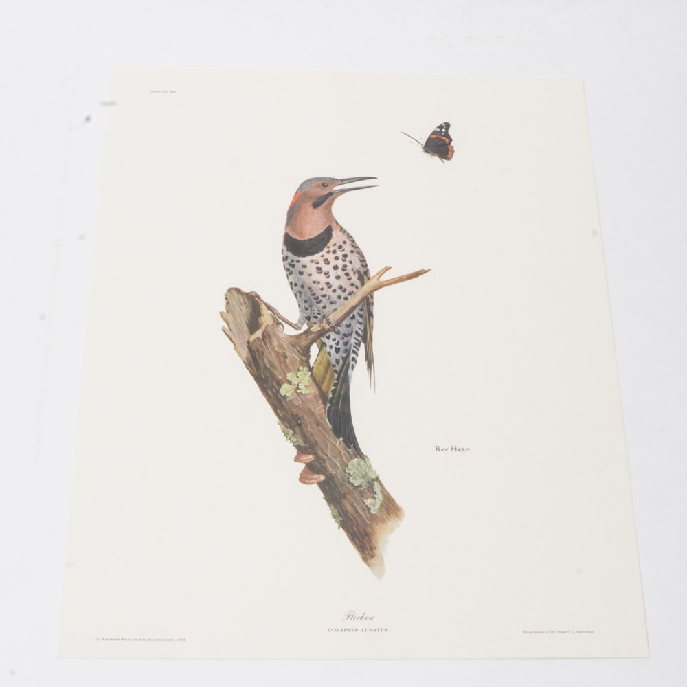 """Ray Harm Offset Lithograph """"Flicker"""""""