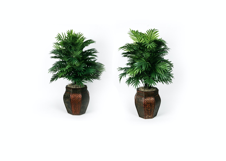 Pair of Faux Plants