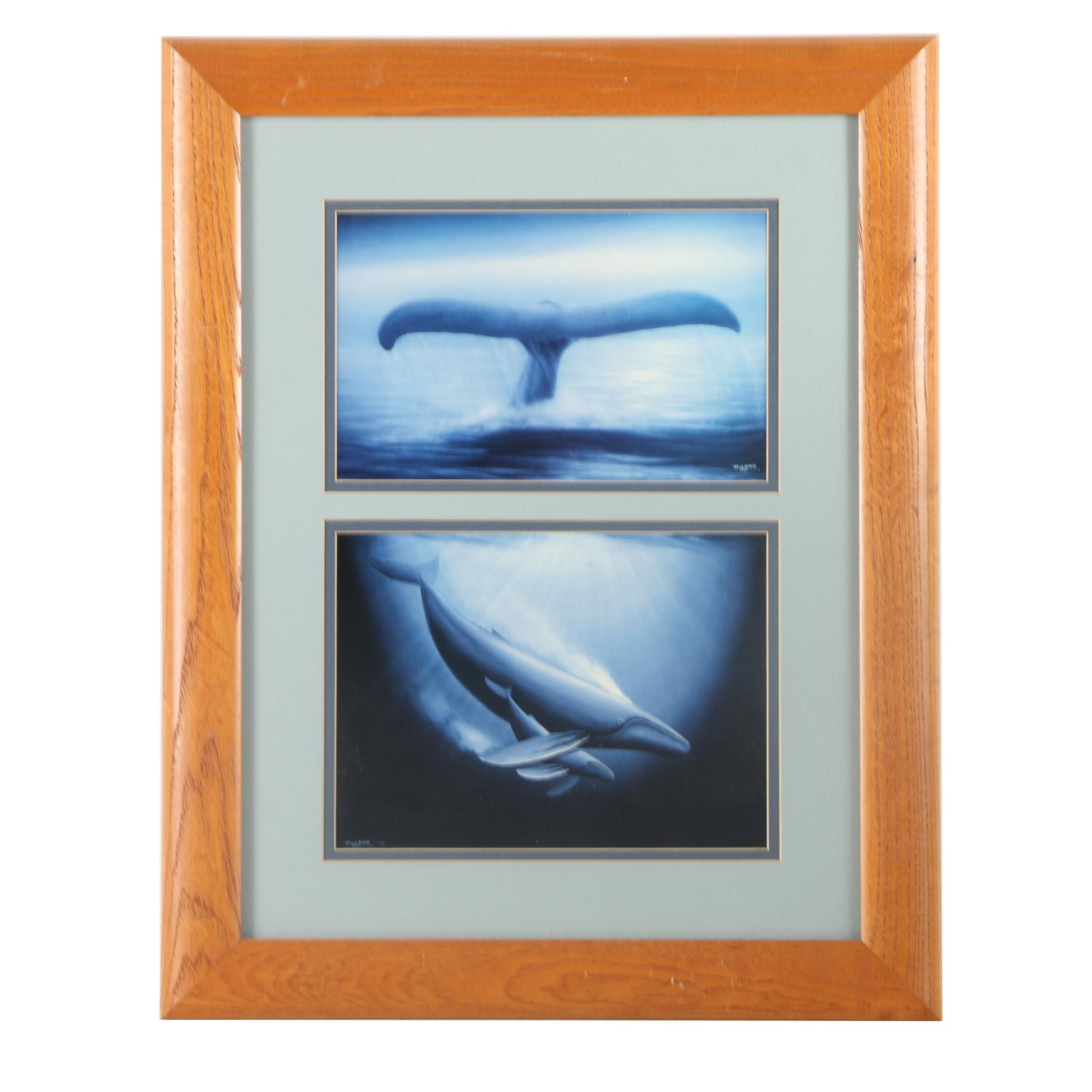 Pair of Offset Lithographs of Whales by Wyland