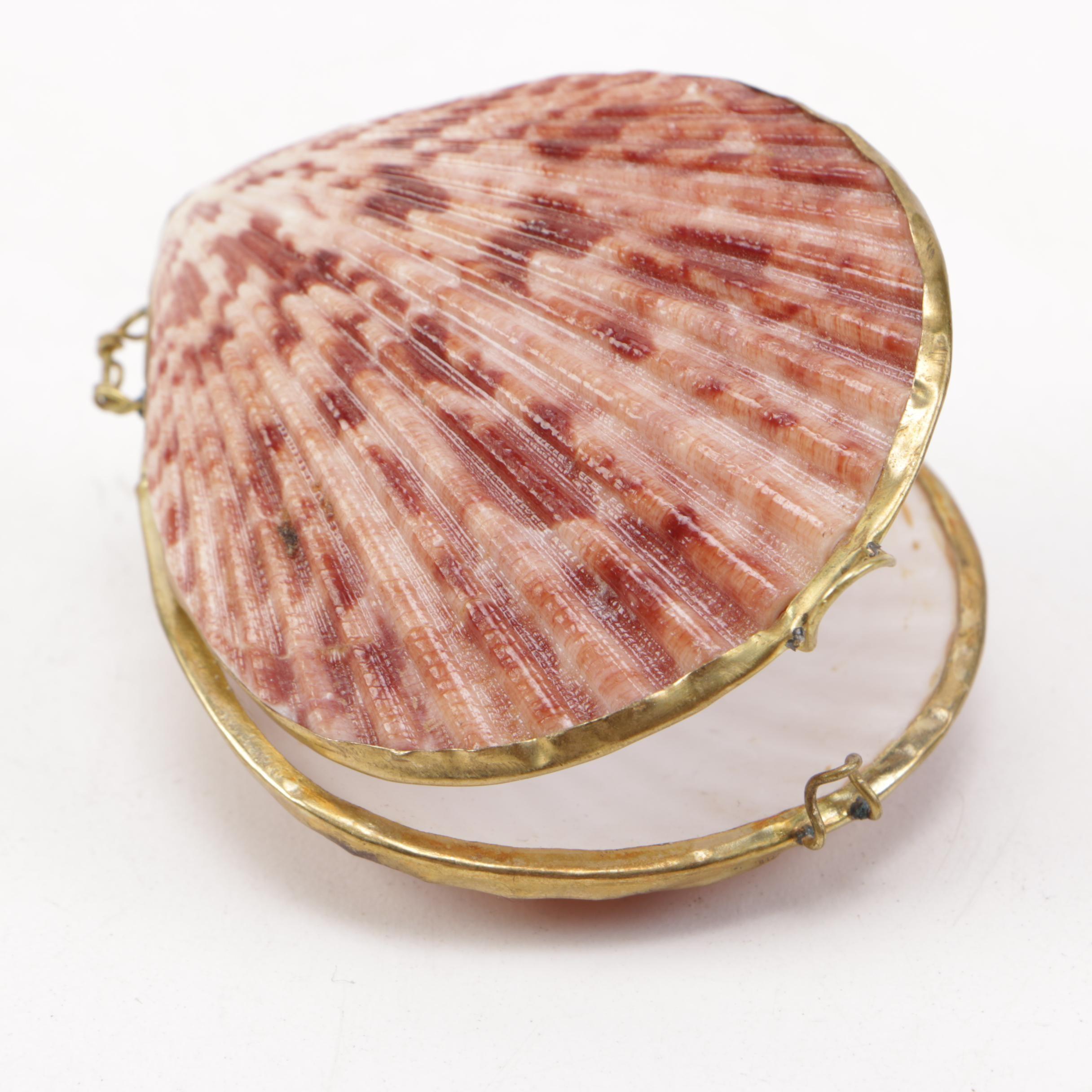 Shell Compact