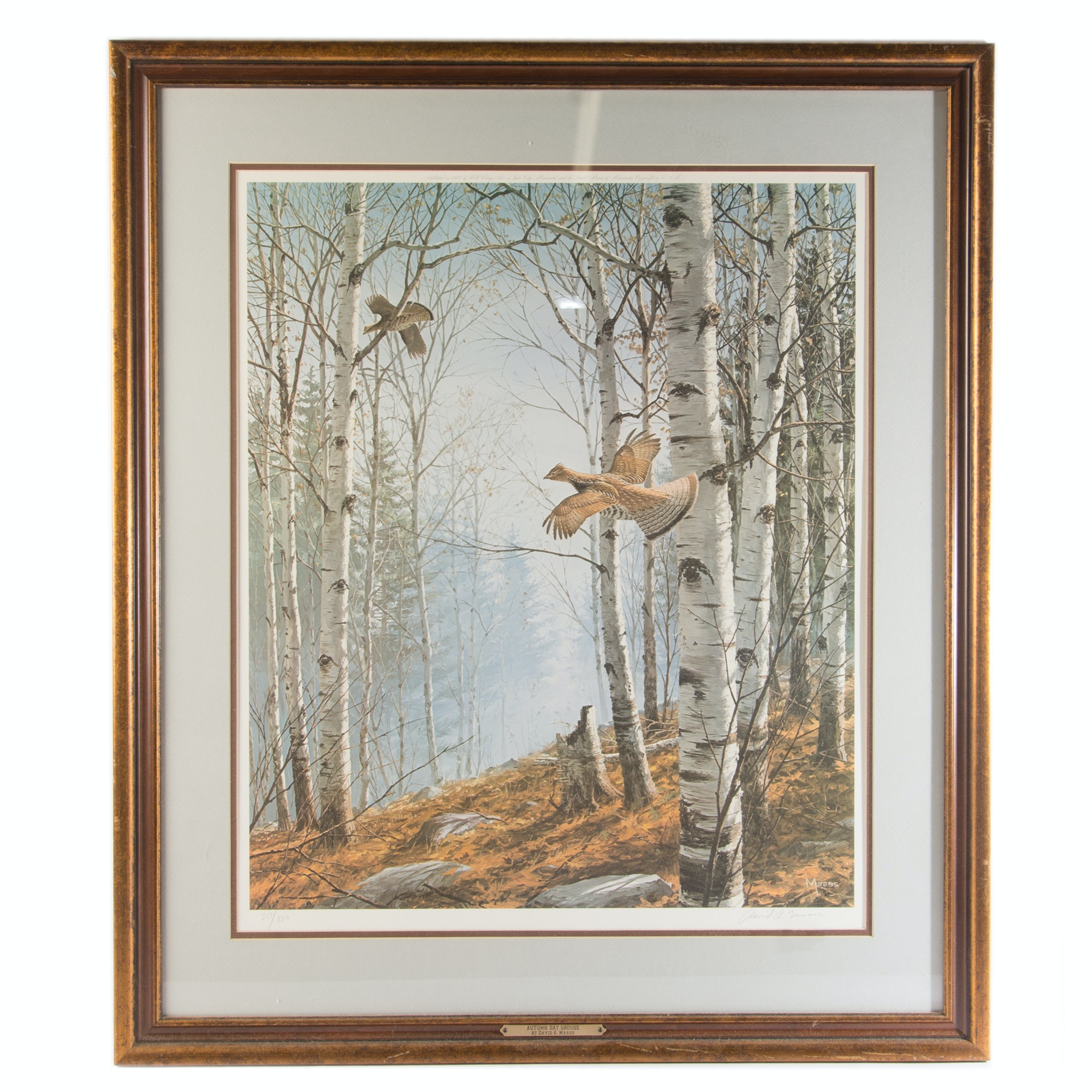 "David A. Maass Limited Edition Offset Lithograph ""Autumn Day Grouse"""