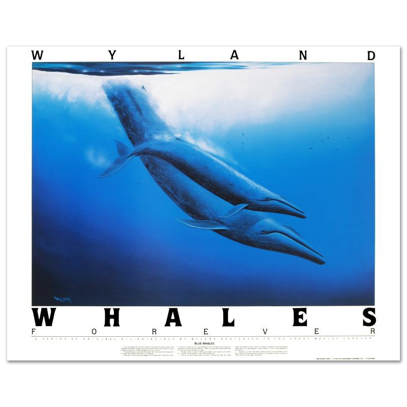 """""""Blue Whales"""" Poster by Wyland"""