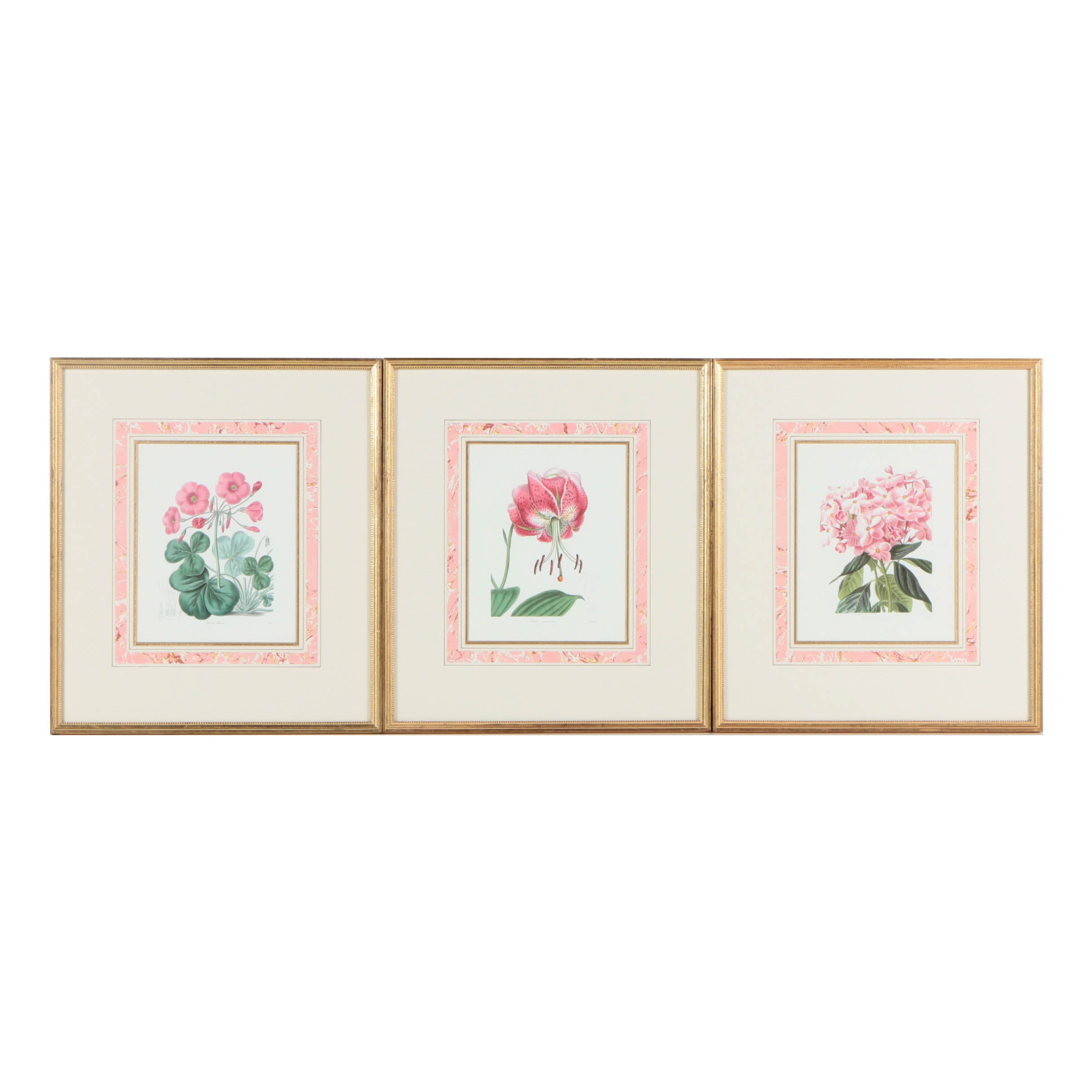 Assorted Reproduction Offset Lithographs on Paper of Botanical Illustrations