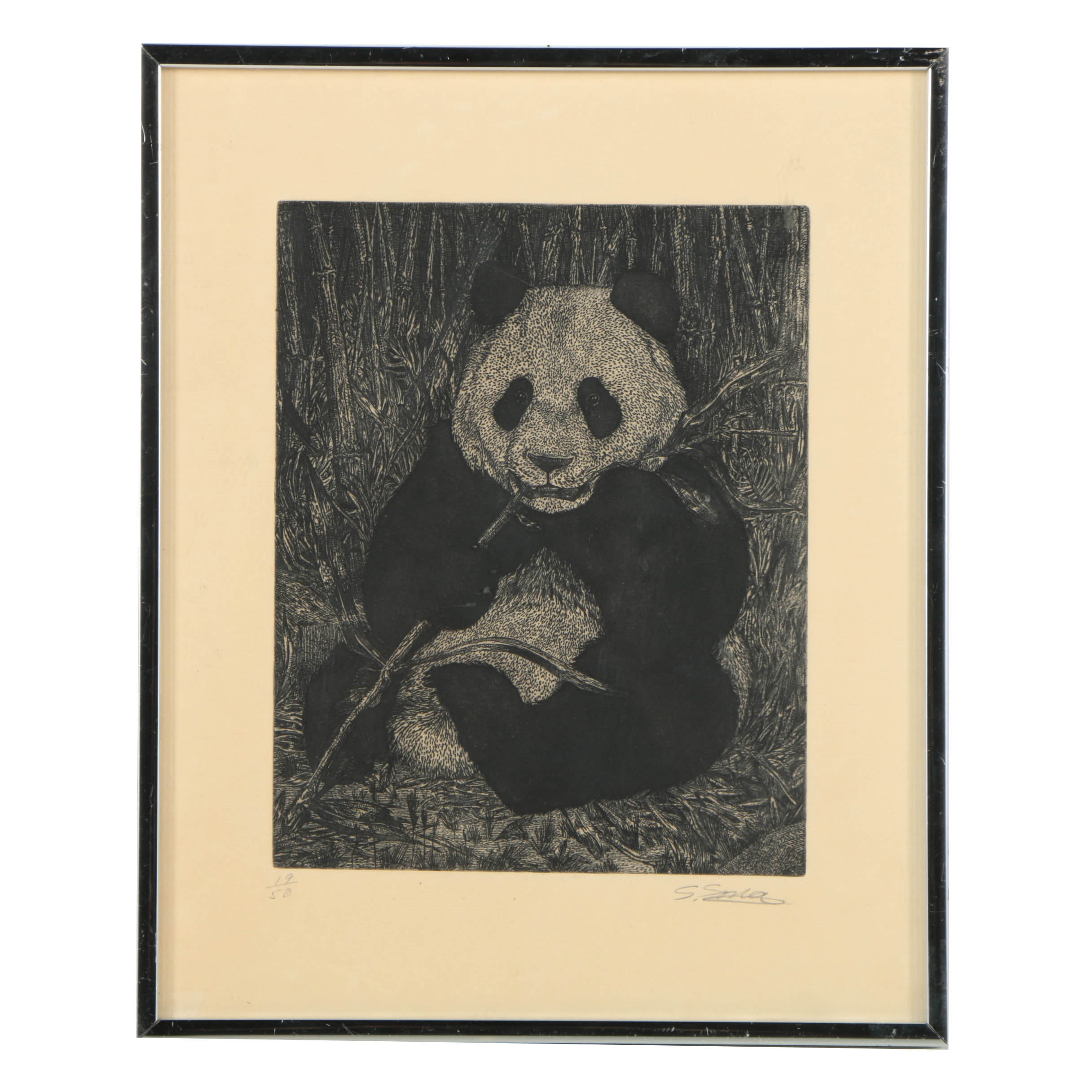 Limited Edition Etching on Paper of a Panda