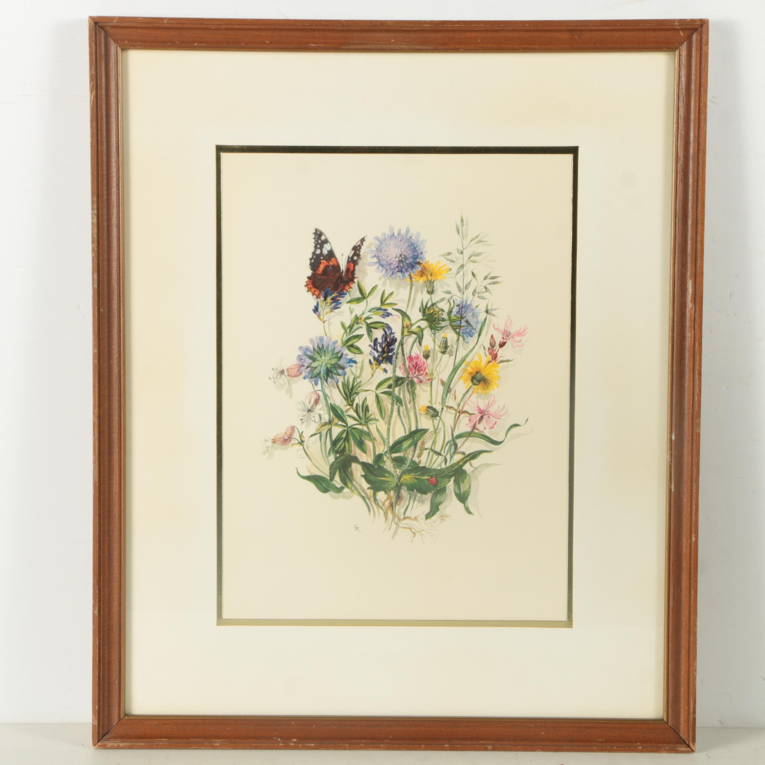Offset Lithograph of Flowers and Insects
