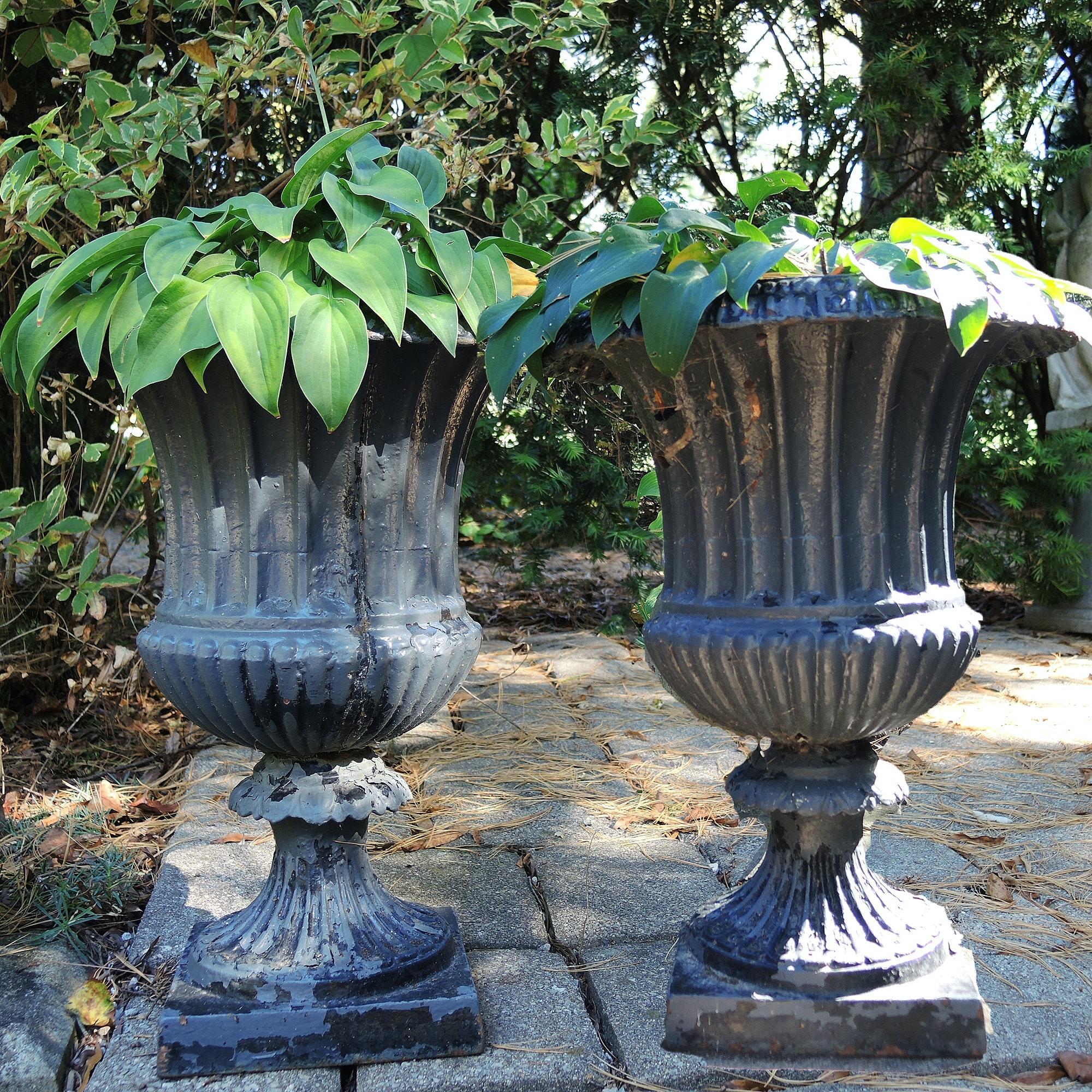 Cast Iron Planter Set