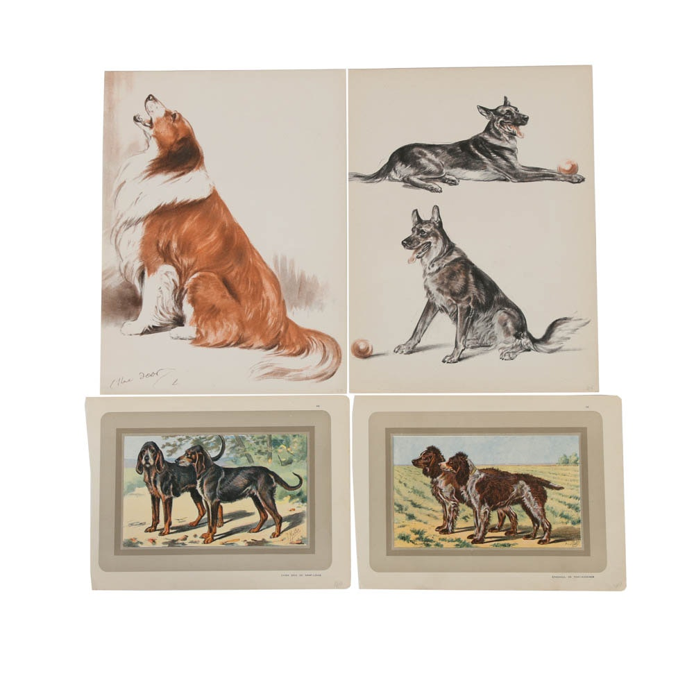 Variety of Offset Lithographs on Paper of Dogs