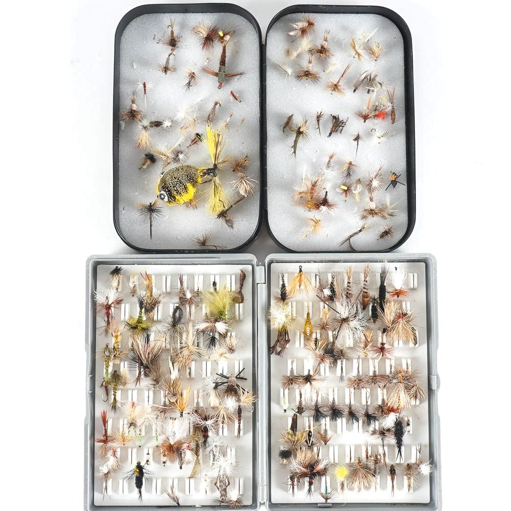 Fishing Lures in Storage Boxes