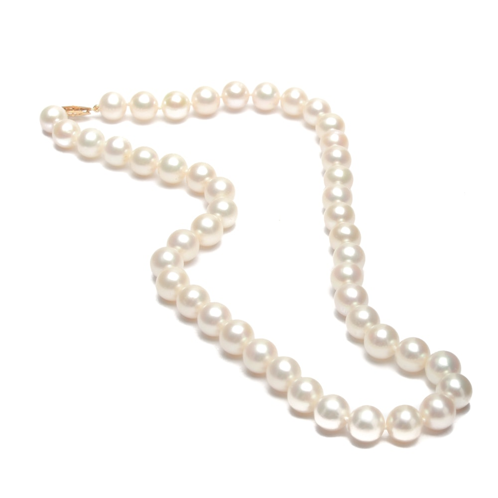Cultured Pearl Single Strand Necklace with 14K Yellow Gold Clasp