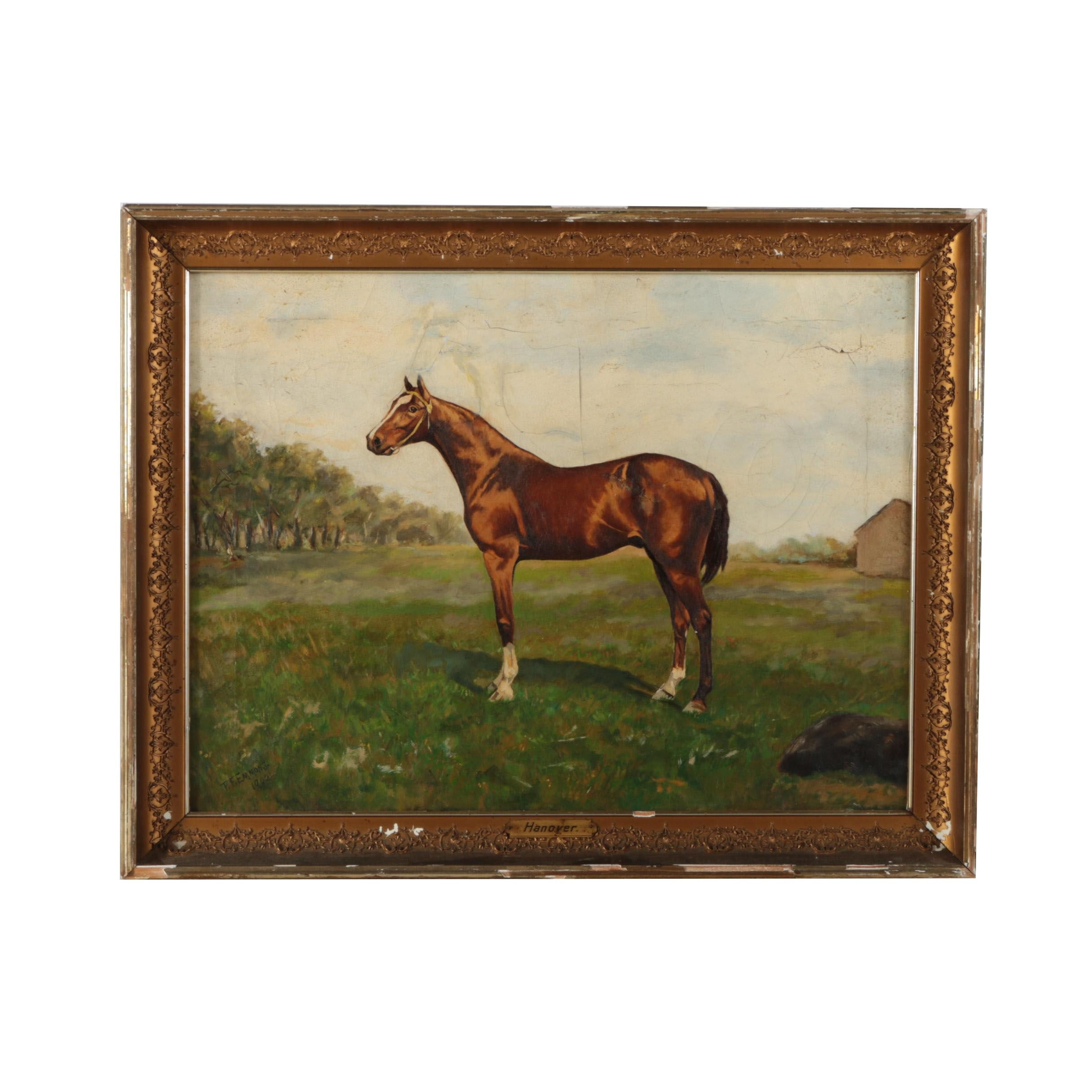 """T.F. Emmons Oil Painting of a Thoroughbred """"Hanover"""""""