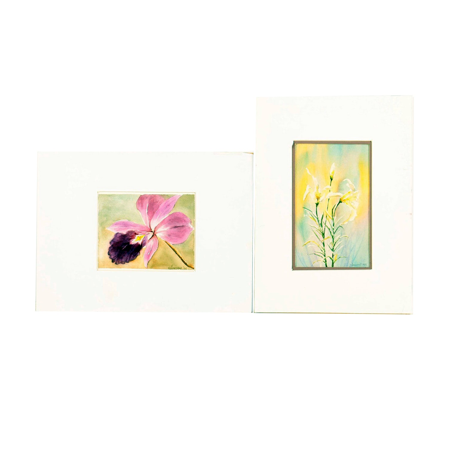 Pair of Anthony Elacion Floral Watercolor Paintings on Paper