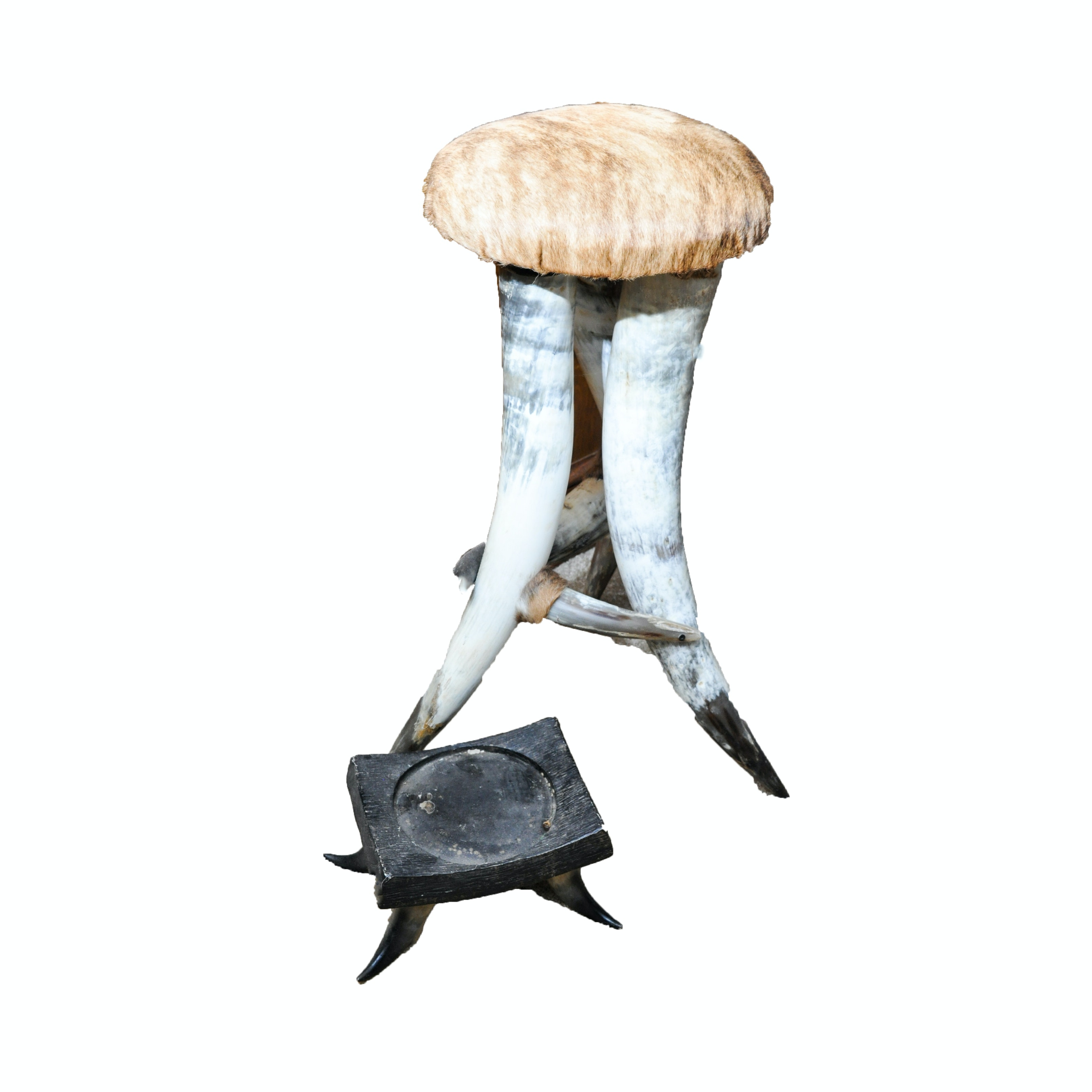 Steer Horn Stool and Stand