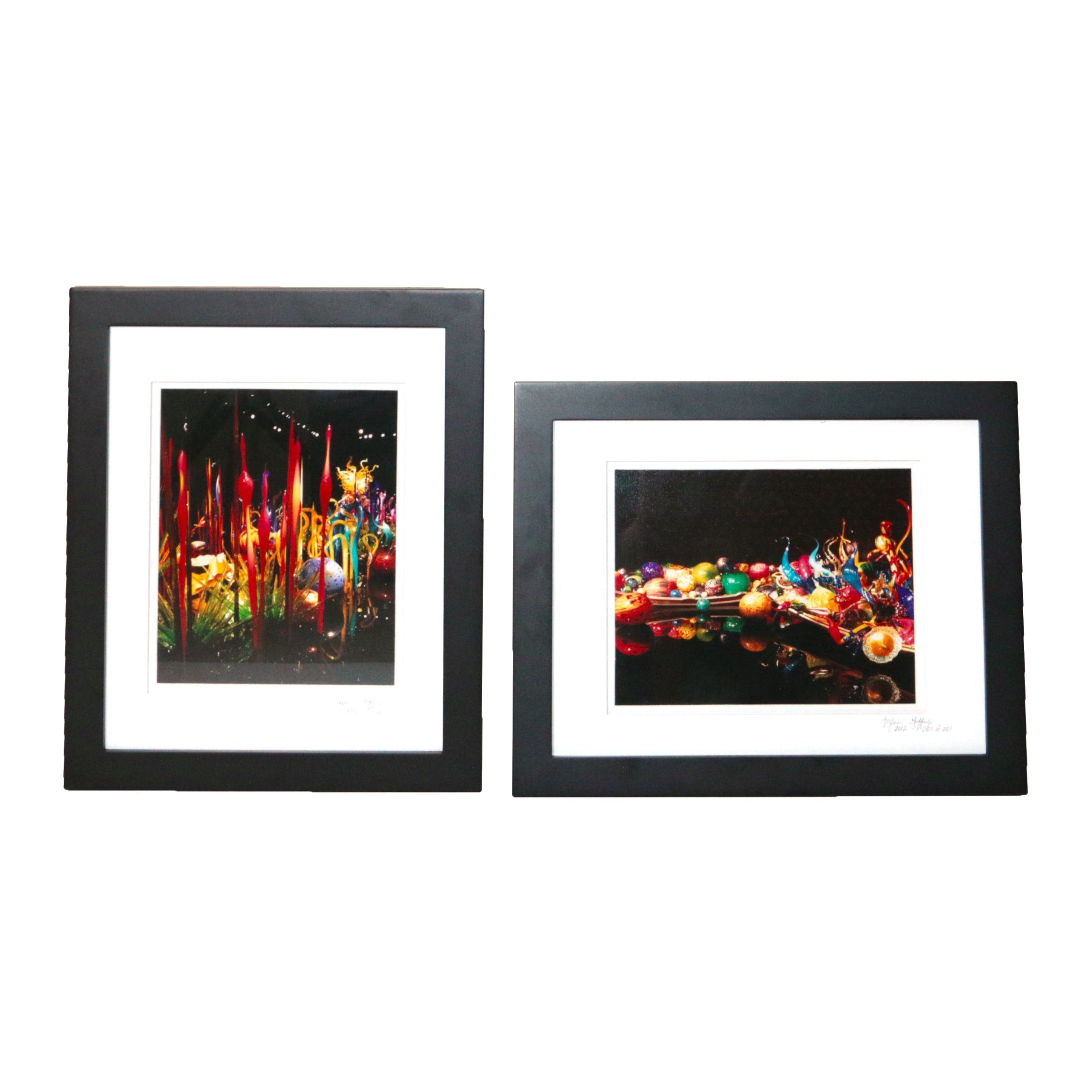 Chihuly Frame Photos