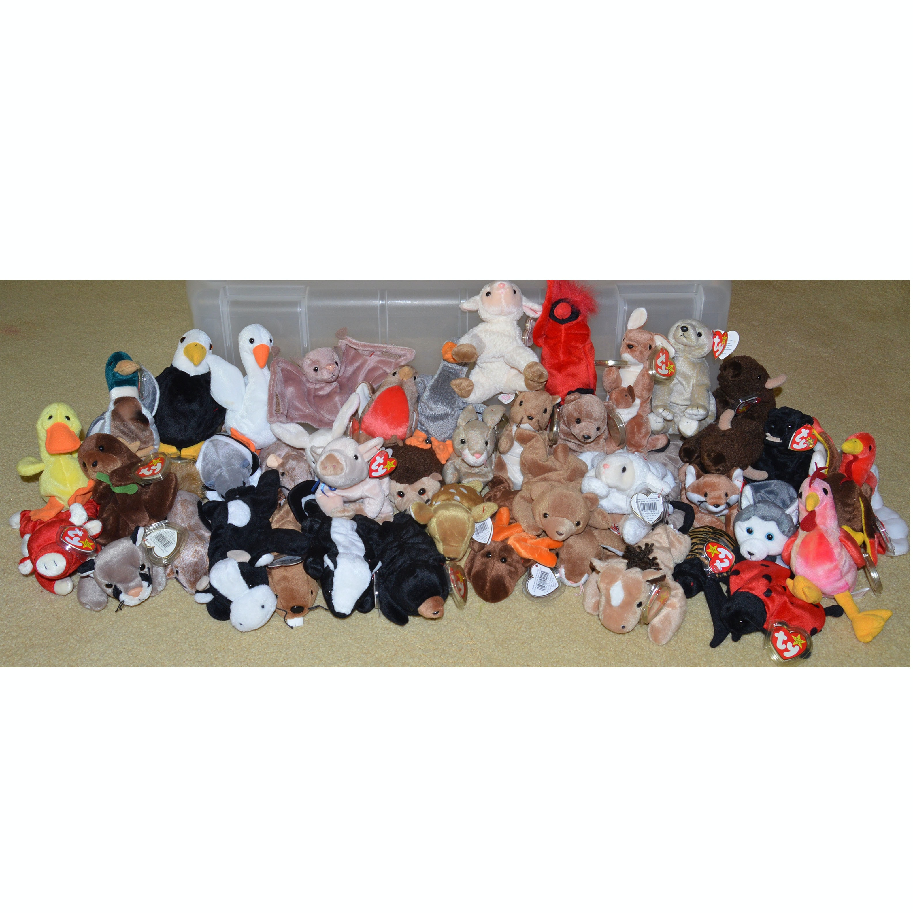 Vintage Ty Beanie Baby Collection