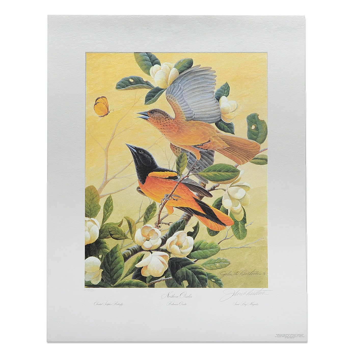 "John A. Ruthven Offset Lithograph on Paper ""Northern Orioles"""