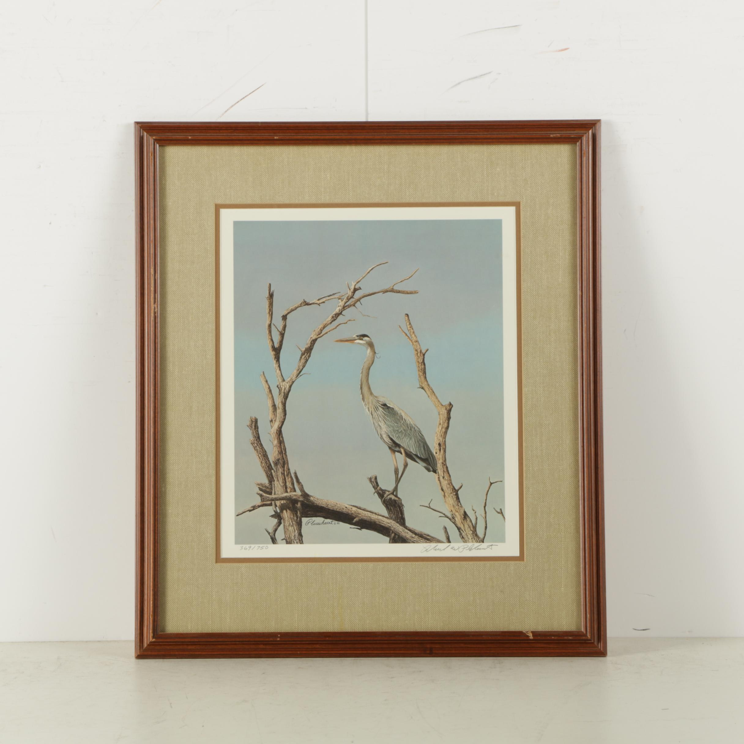 Richard Plasschaert Limited Edition Reproduction Print of Heron