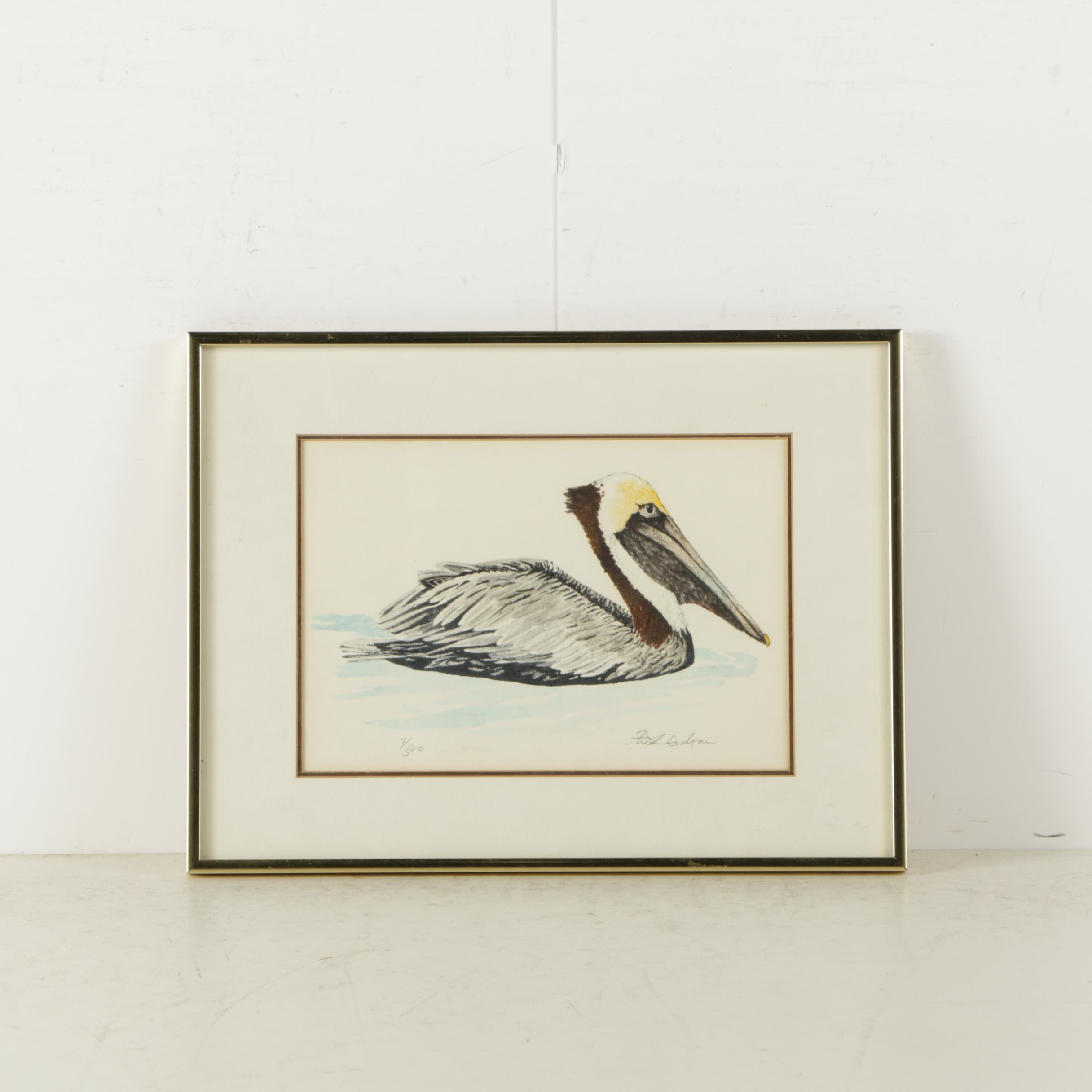Limited Edition Offset Lithograph Print on Paper of Brown Pelican