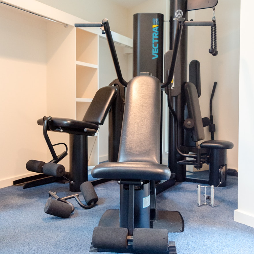 Vectra on line 1600 home gym ebth
