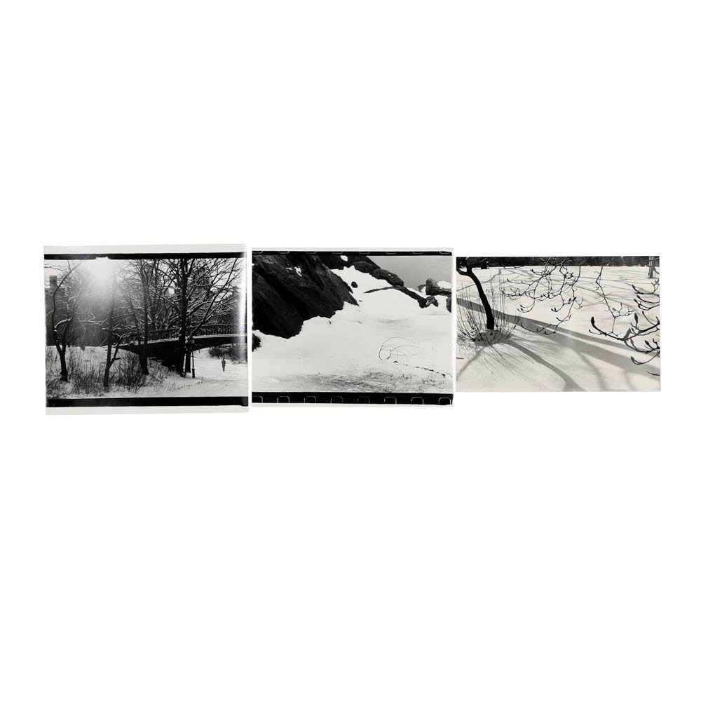 Collection of Donald Werner Black and White Analog Photographs of Winter Scenes