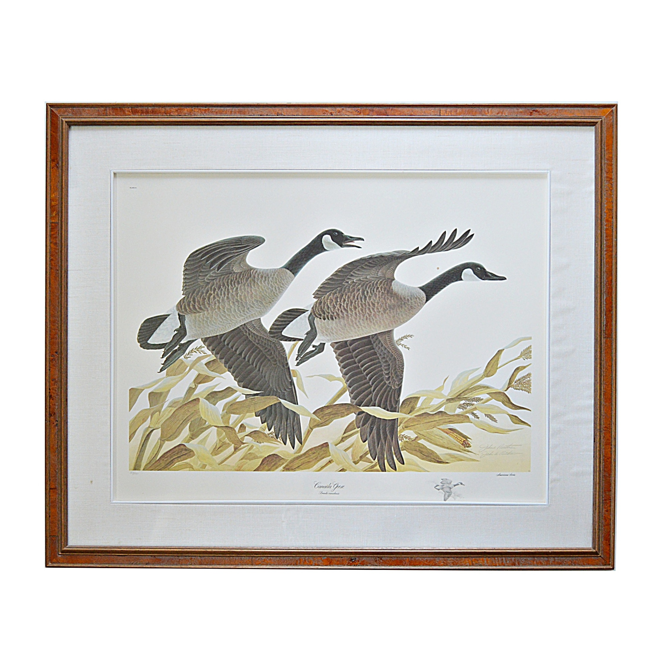 """John Ruthven Limited Edition Offset Lithograph with Remarque """"Canada Geese"""""""