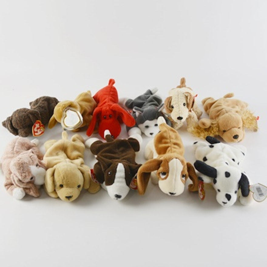 76d373a72d6 Ty Beanie Baby Collection of Eleven Dogs   EBTH