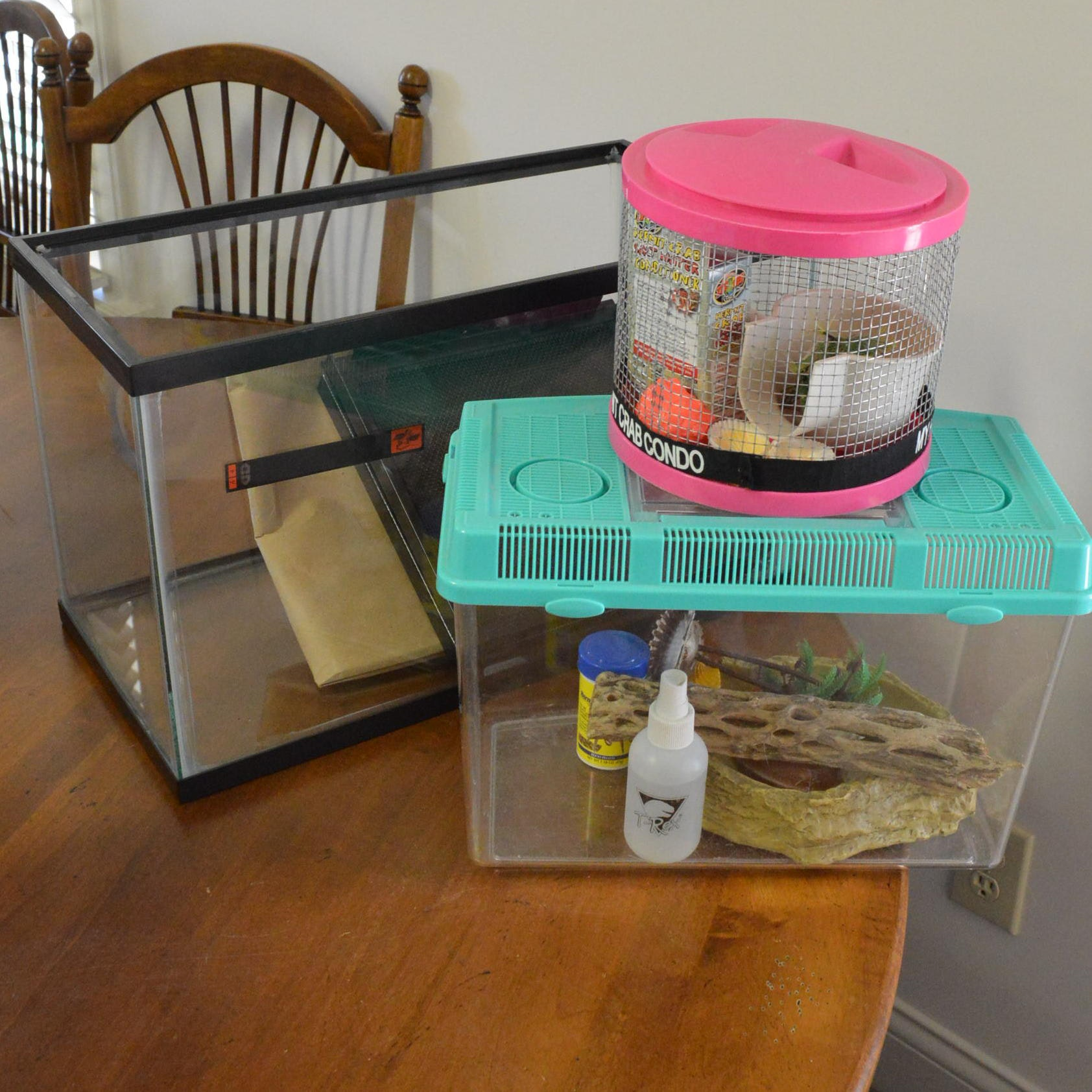 Hermit Crab and Other Animal Cages and Supplies