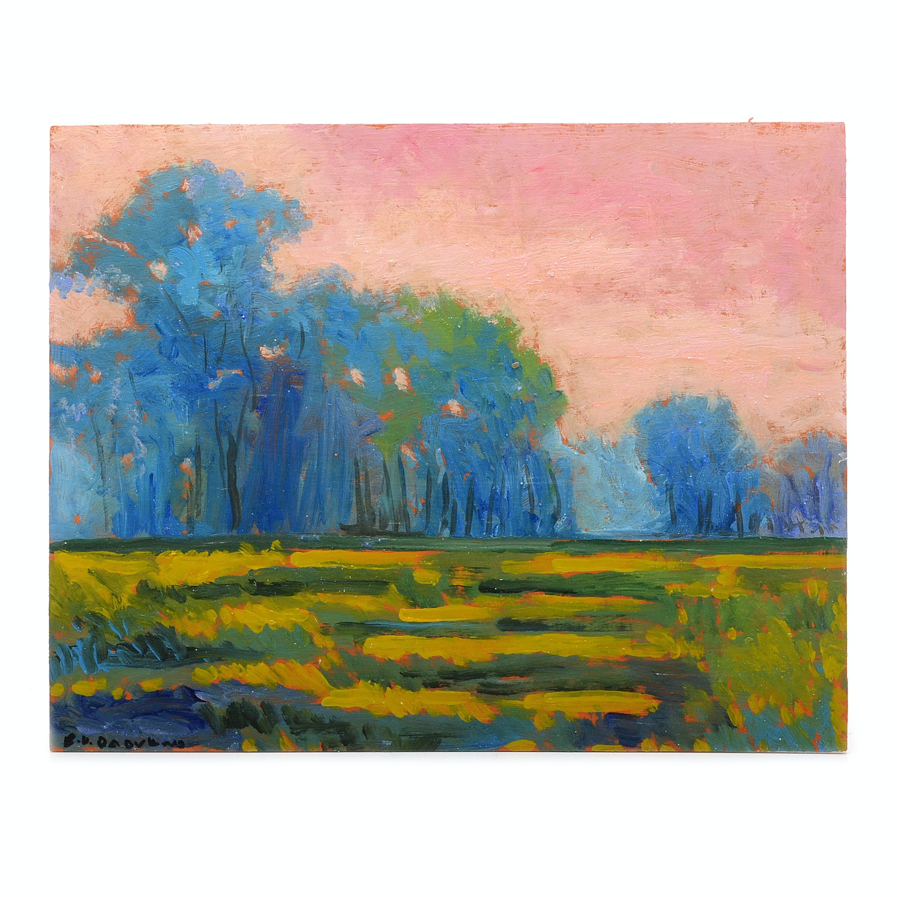 Sulmaz H. Radvand Original Acrylic Painting of a Landscape