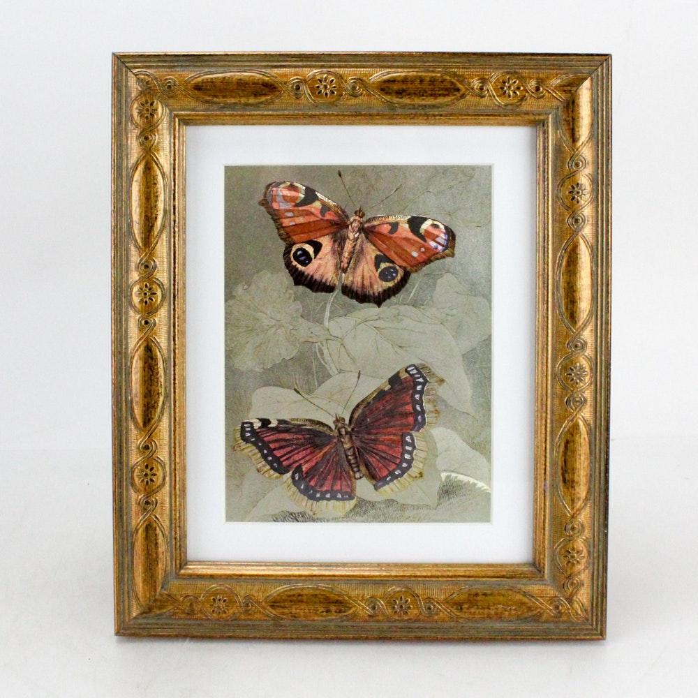 """Dufex Reproduction Print on Embossed Foil """"Butterfly"""""""