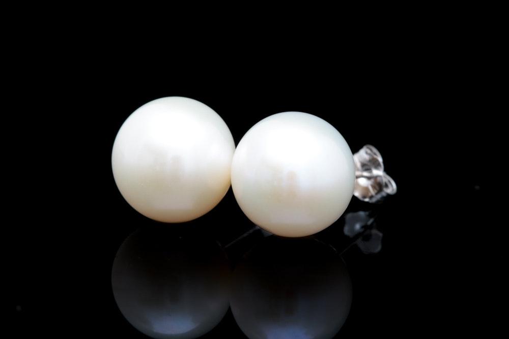 14K White Gold and Akoya Pearl Stud Earrings