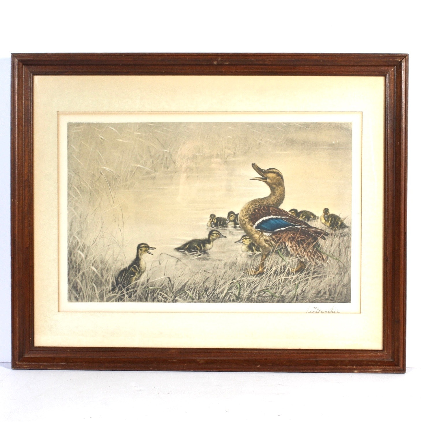Leon Danchin Chromolithograph of Duck and Ducklings
