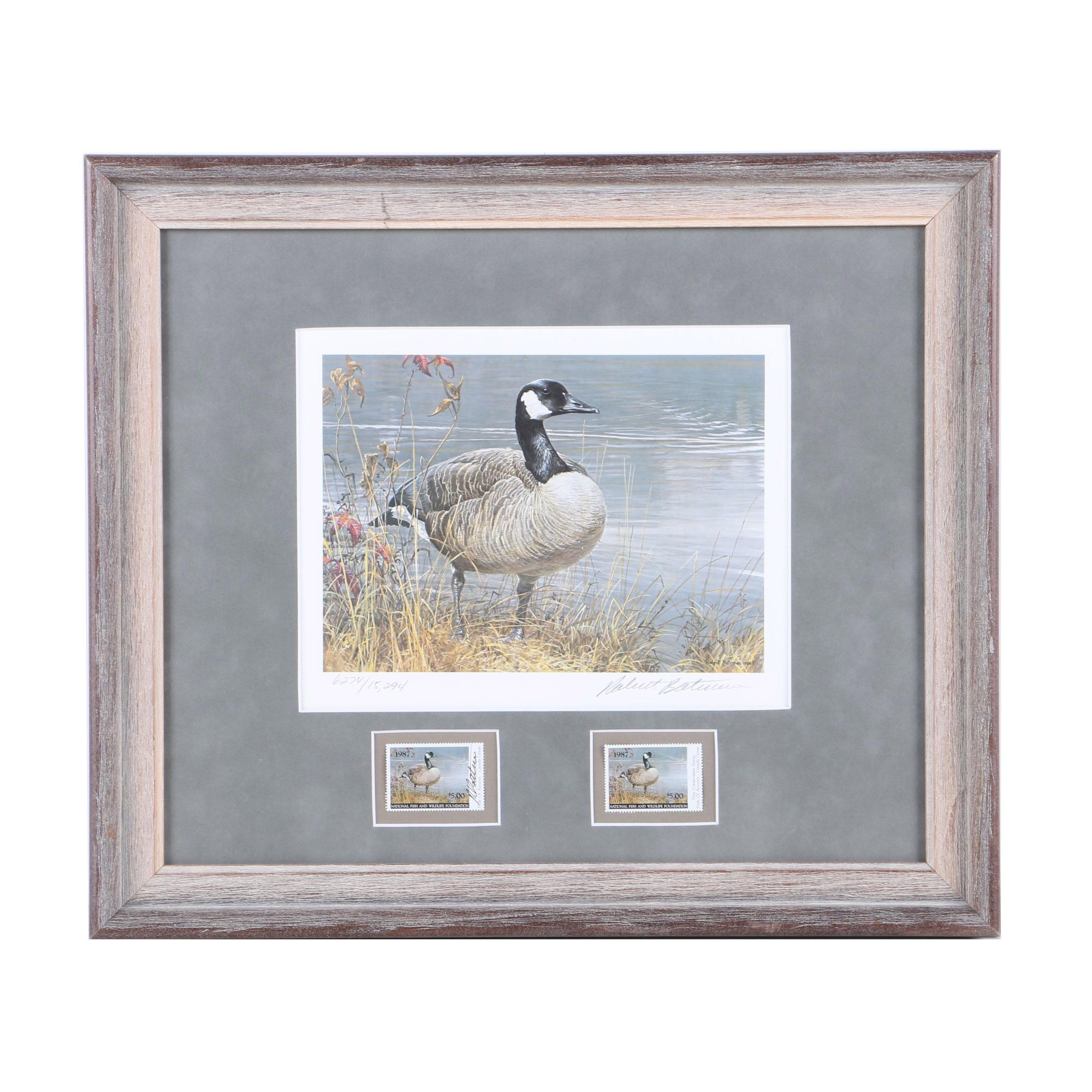Robert Bateman Limited Edition Offset Lithograph and Stamps of Canadian Goose