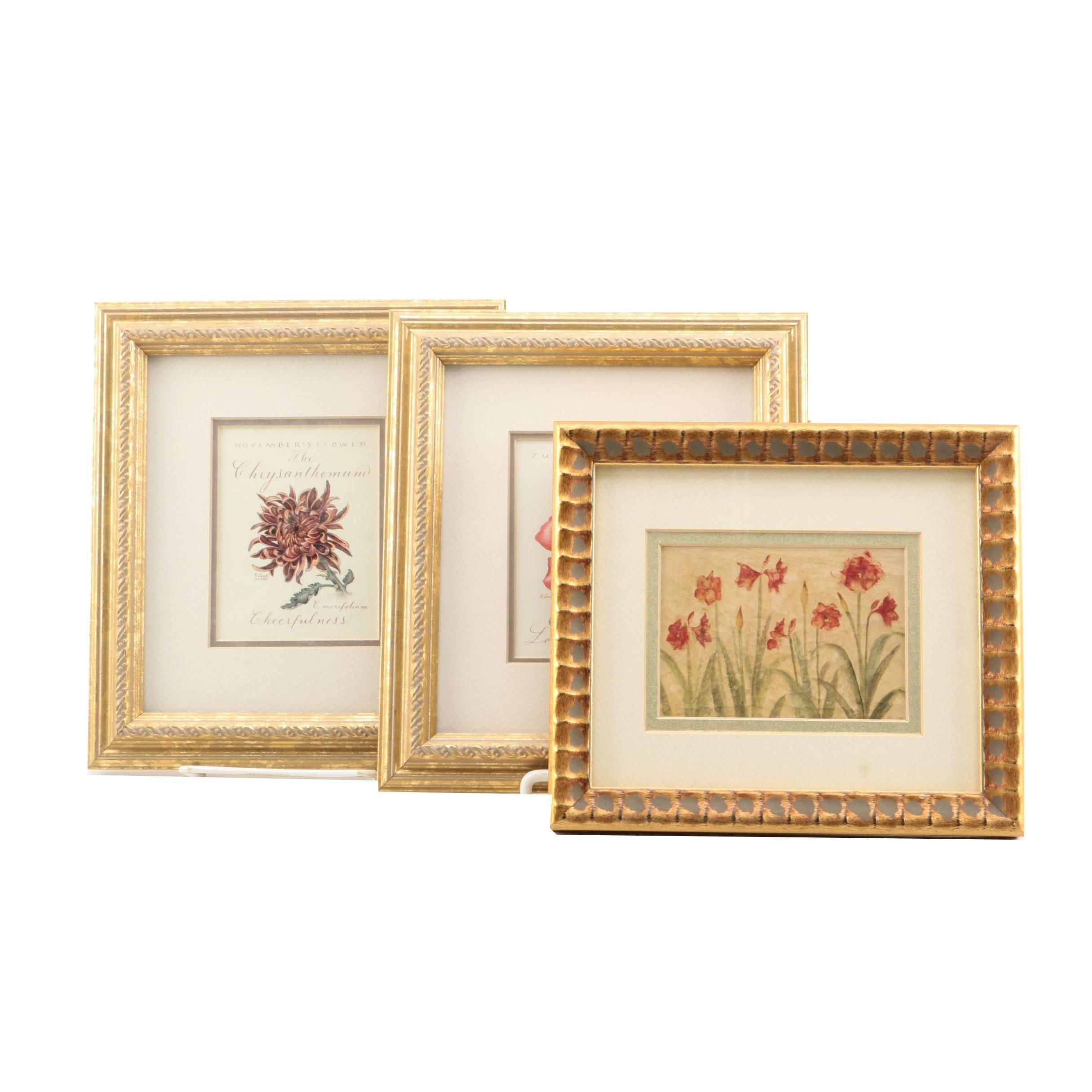 Offset Lithographs on Paper After Floral Illustrations
