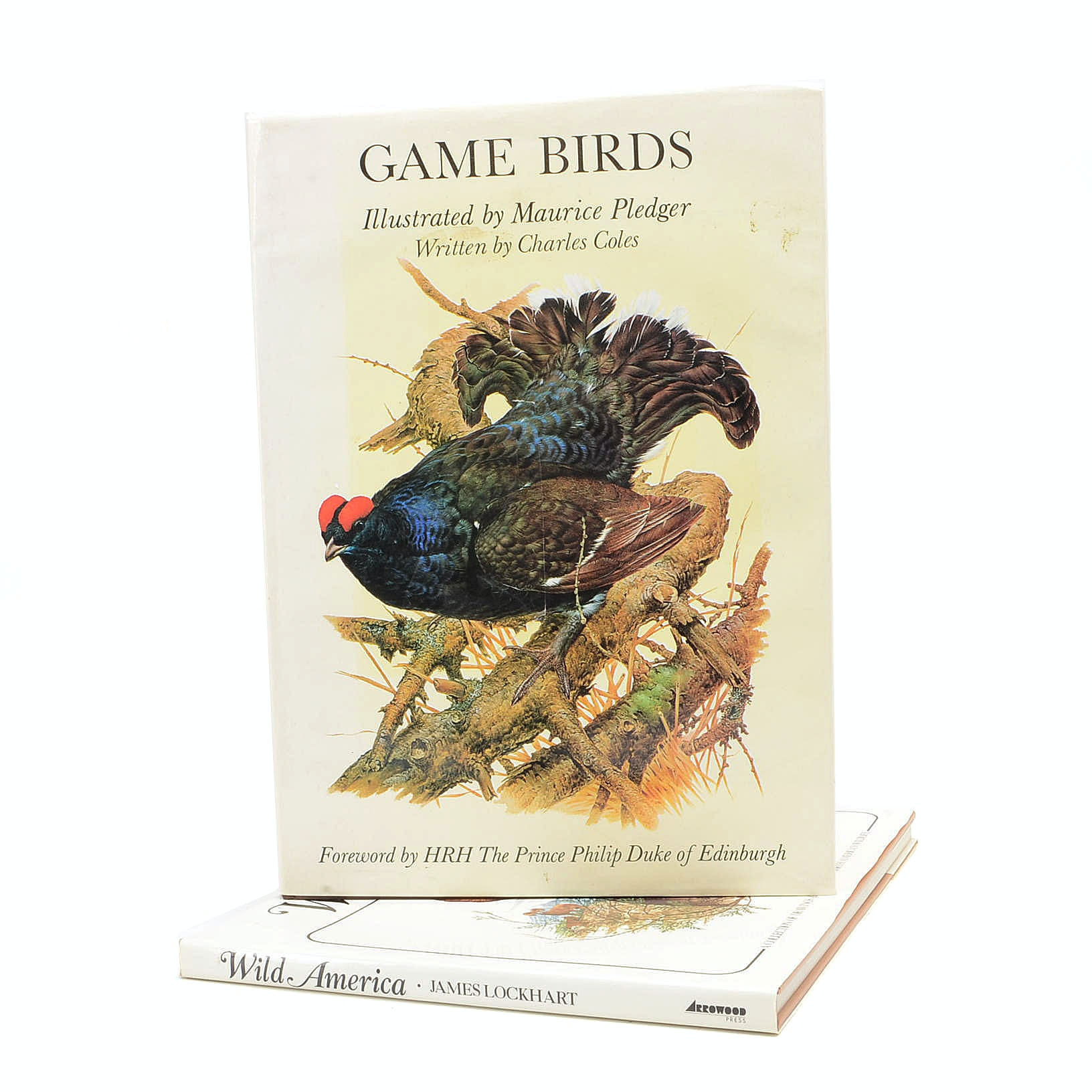 """Game Birds"" Illustrated by Maurice Pledger"