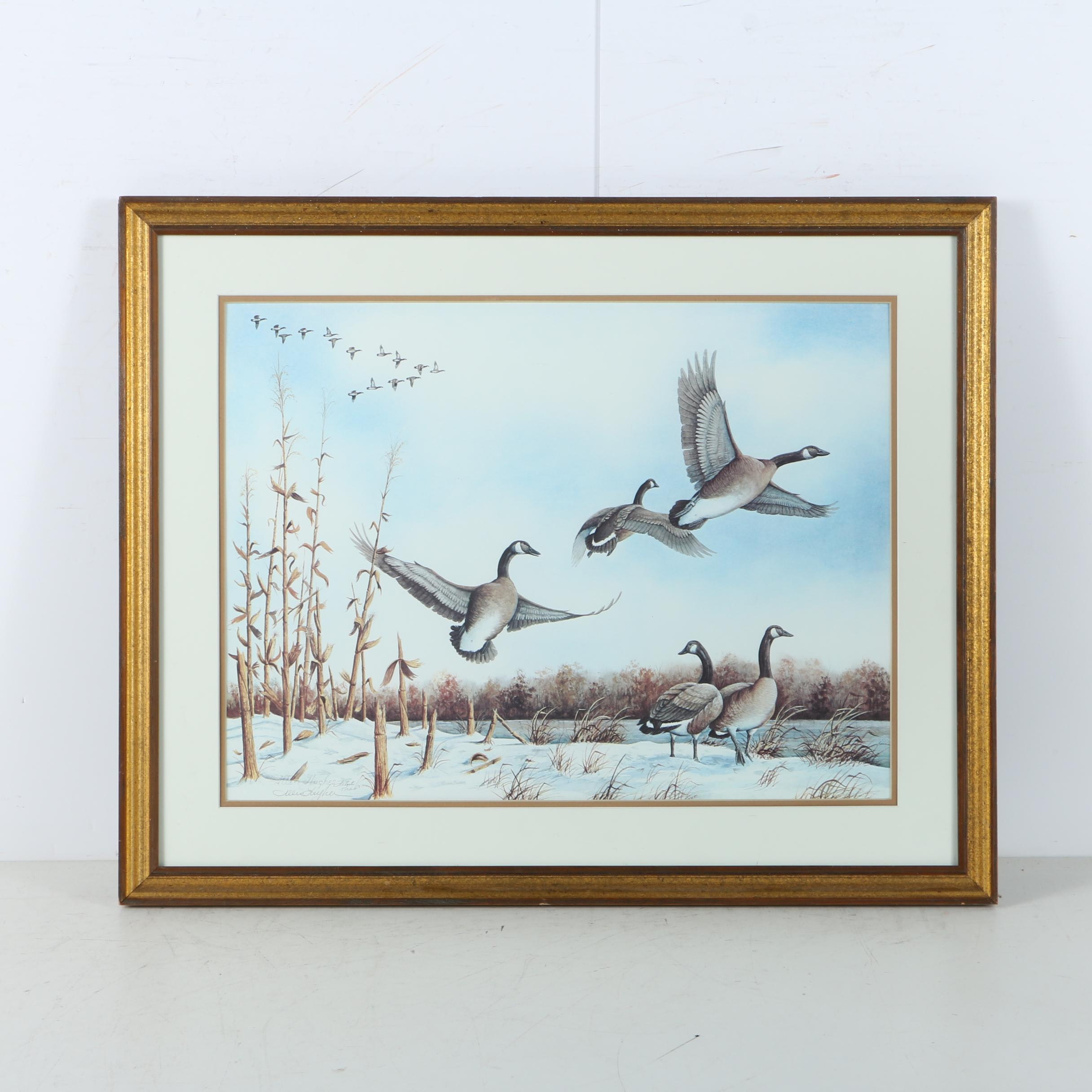 Allen Hughes Limited Edition Offset Lithograph of Geese