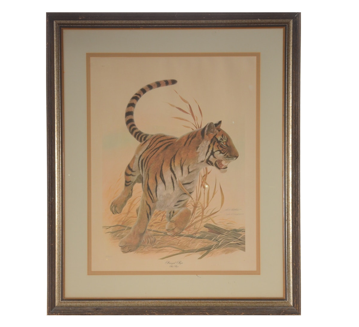 "John A Ruthven Signed Limited Edition Offset Lithograph ""Bengal Tiger"""
