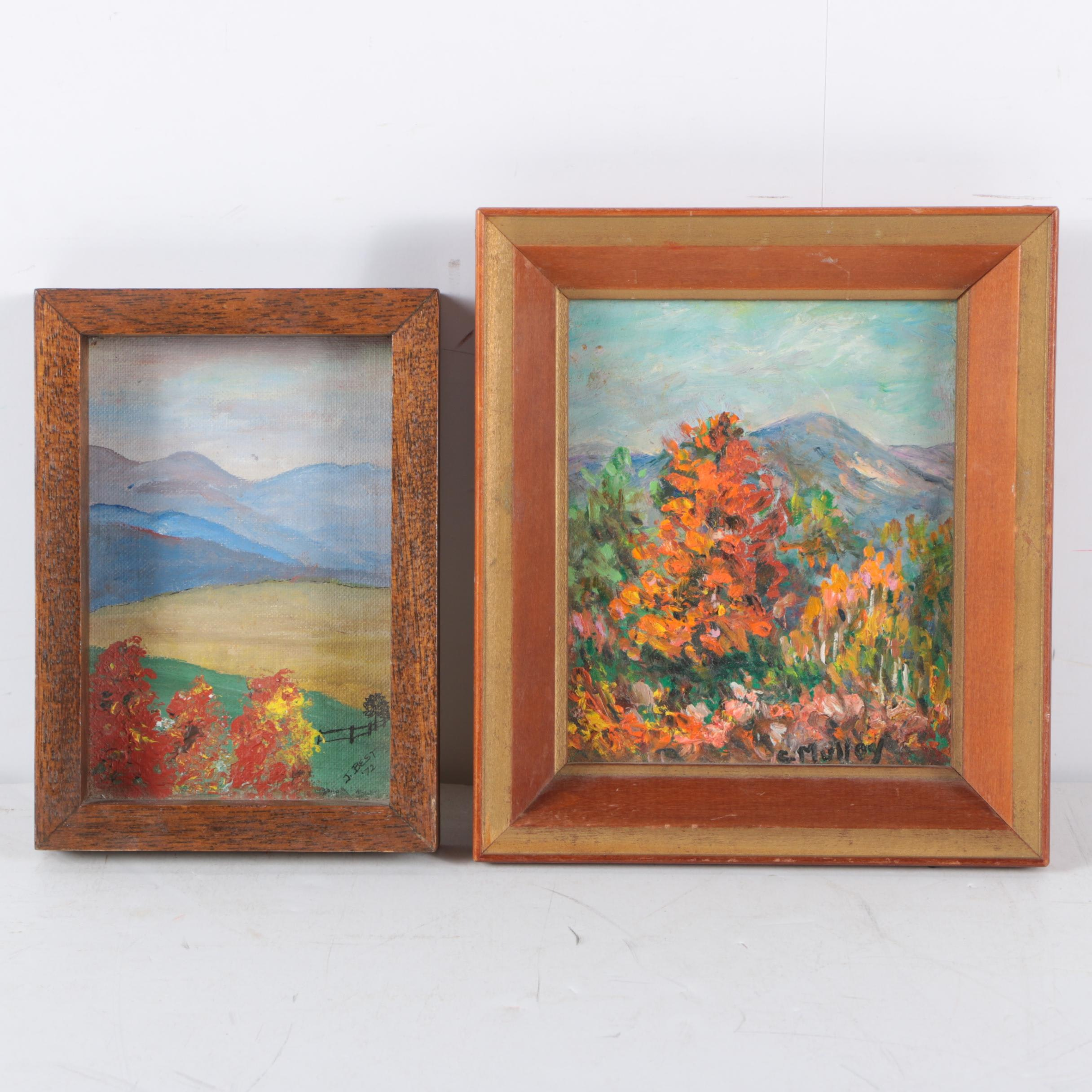 Oil and Acrylic Landscape Paintings on Board
