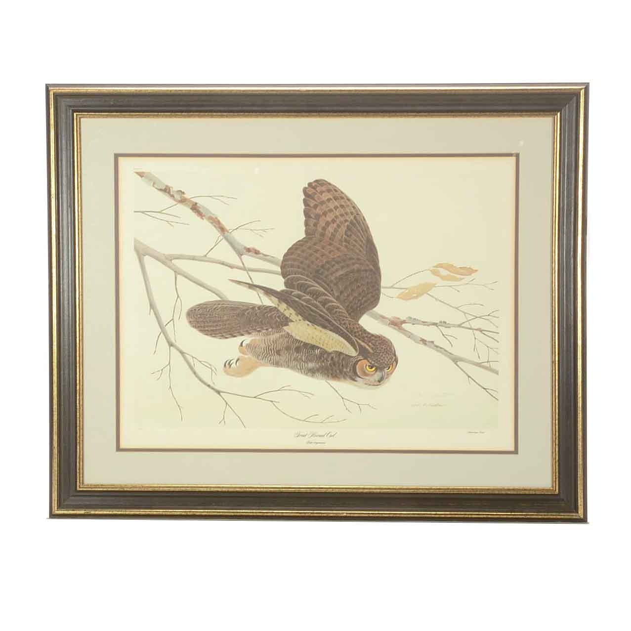 "John Ruthven Limited Edition Offset Lithograph on Paper ""Great Horned Owl"""