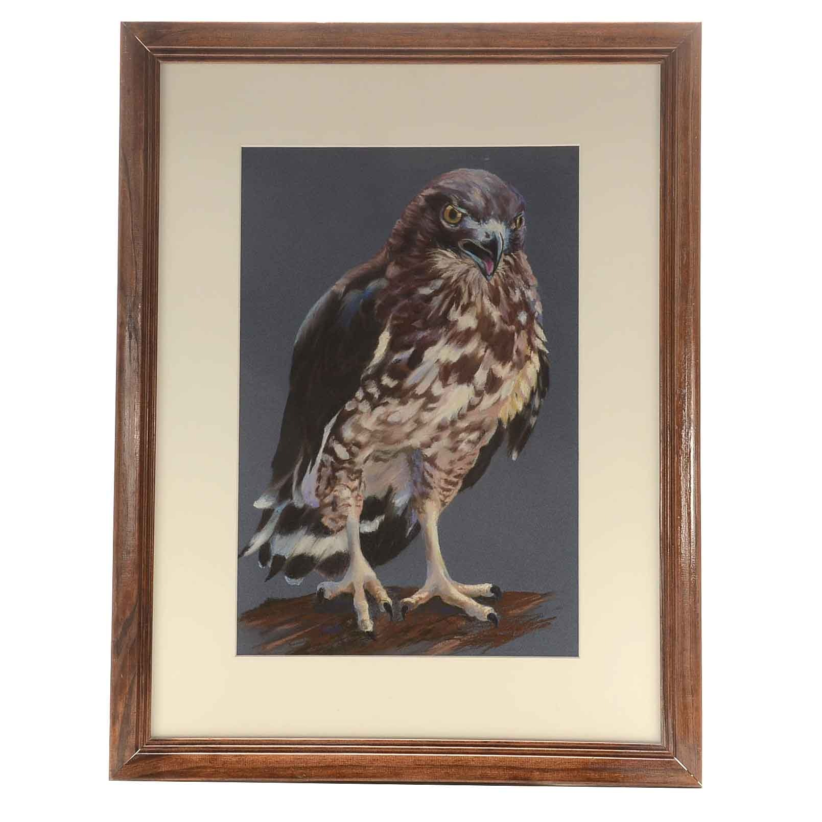 Deanna Boling Original Pastel Drawing of a Hawk