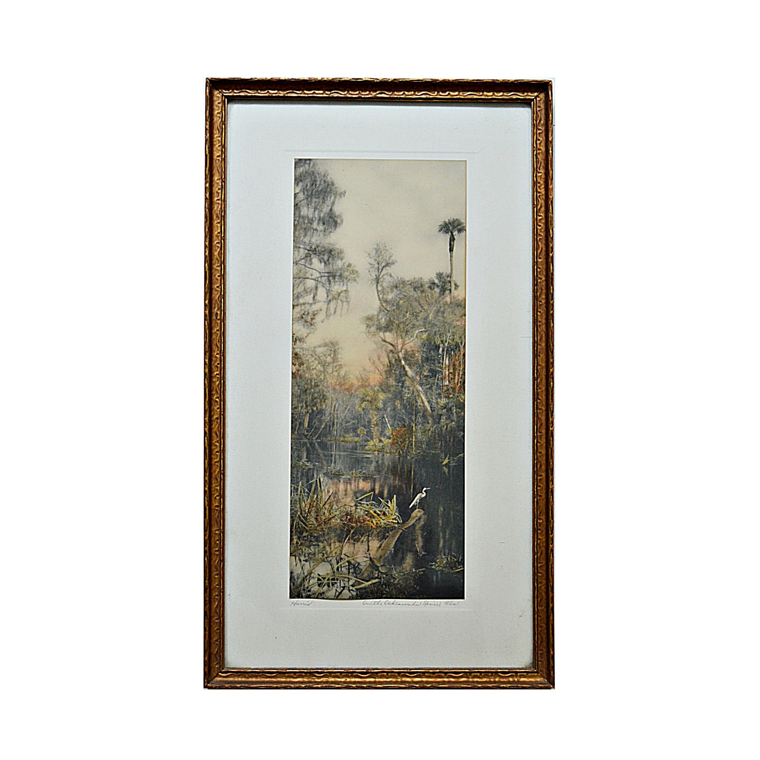 """William J. Harris Hand Tinted Photogravure Titled """"On the Ocklawaha River"""""""