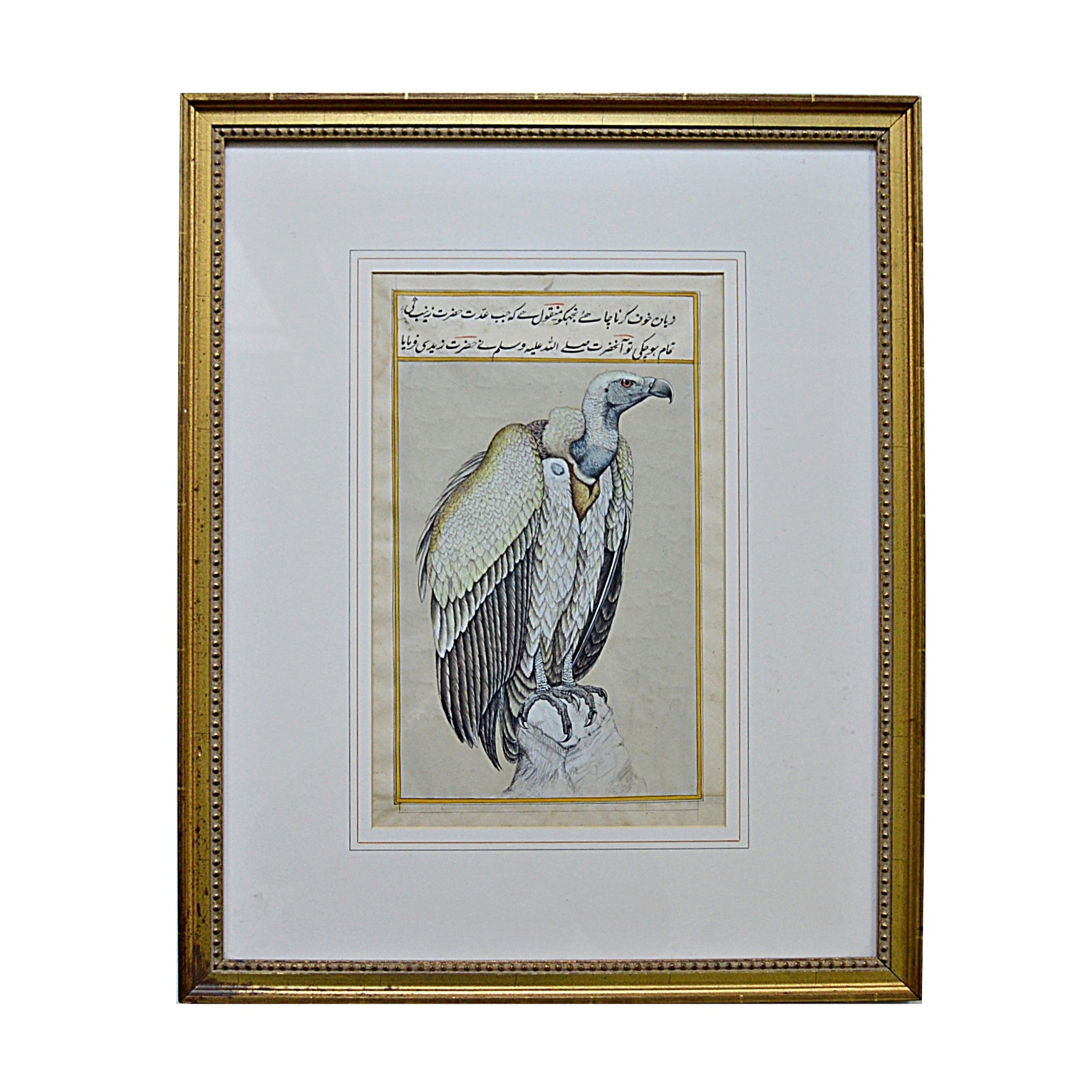 Late 19th- to Early 20th-Century Persian Gouache on Vellum of a Vulture