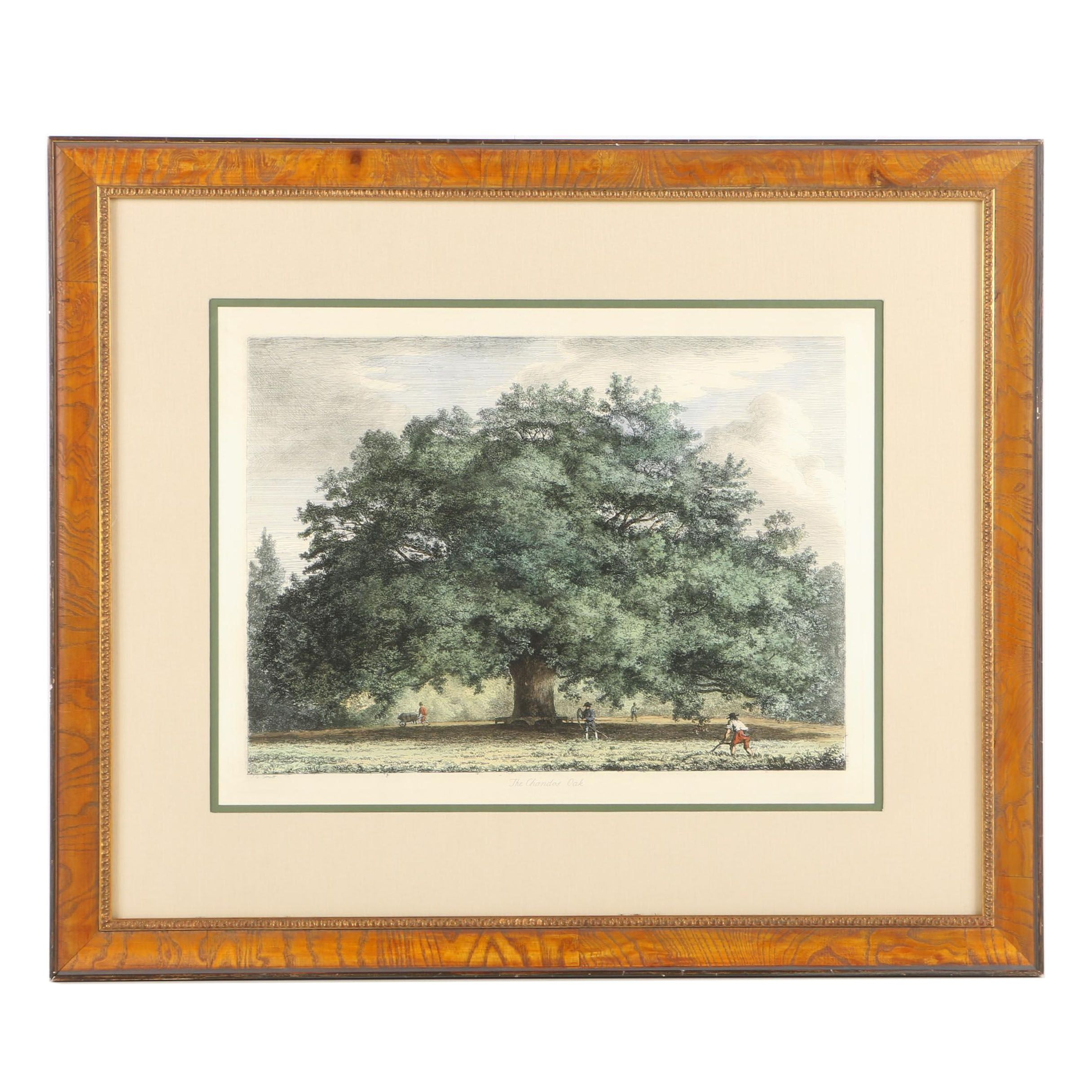 """Giclee Print on Paper After Jacob George Strutt """"The Chandos Oak"""""""