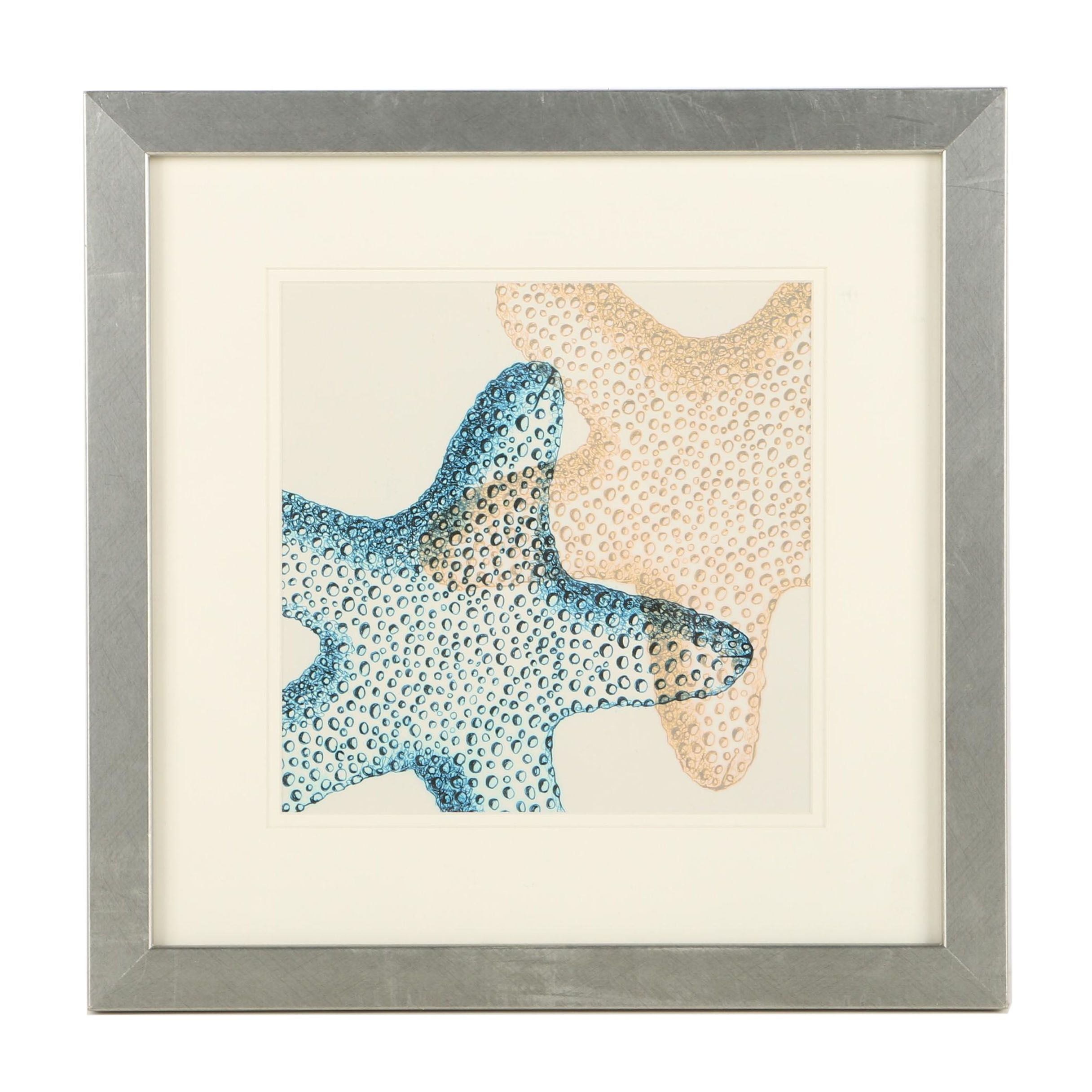 Offset Lithograph Print on Paper After Illustration of Two Starfish