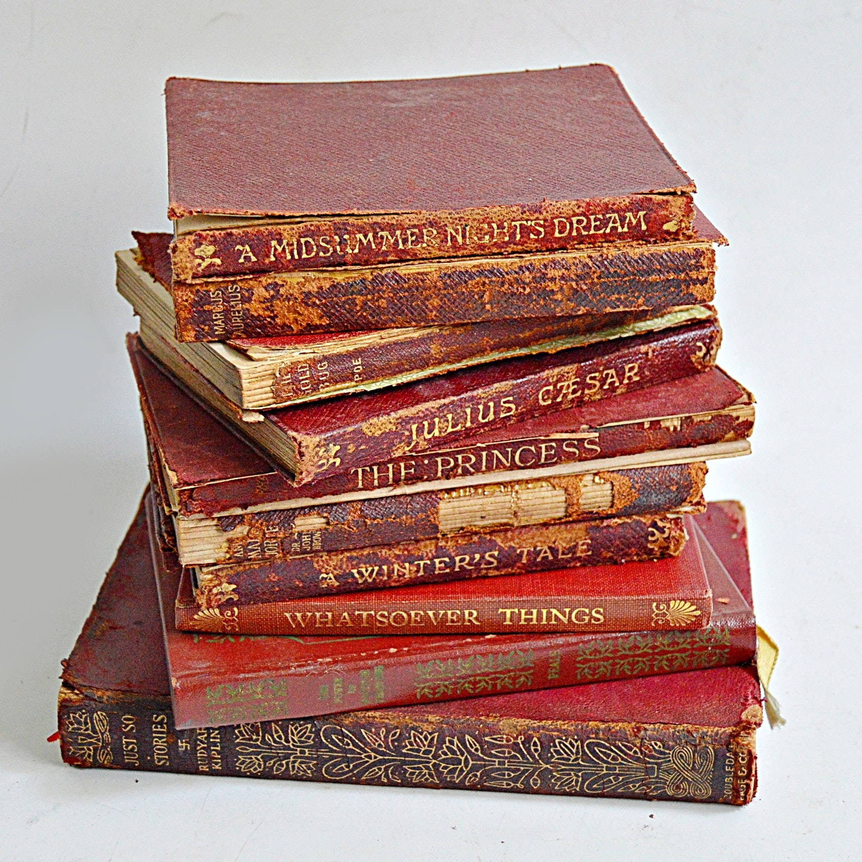 Antique Classic Books with Shakespeare, Poe
