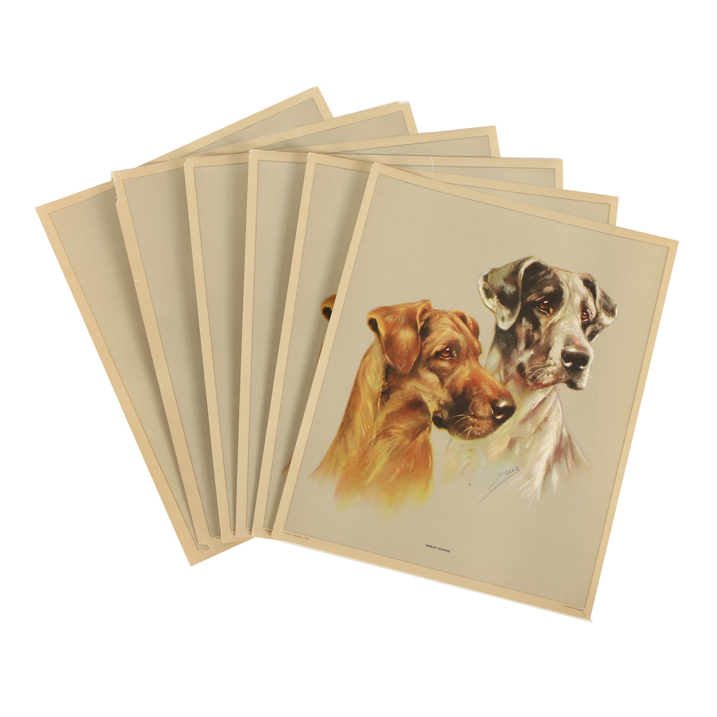 Offset Lithographs of Dogs After Mabel Gear