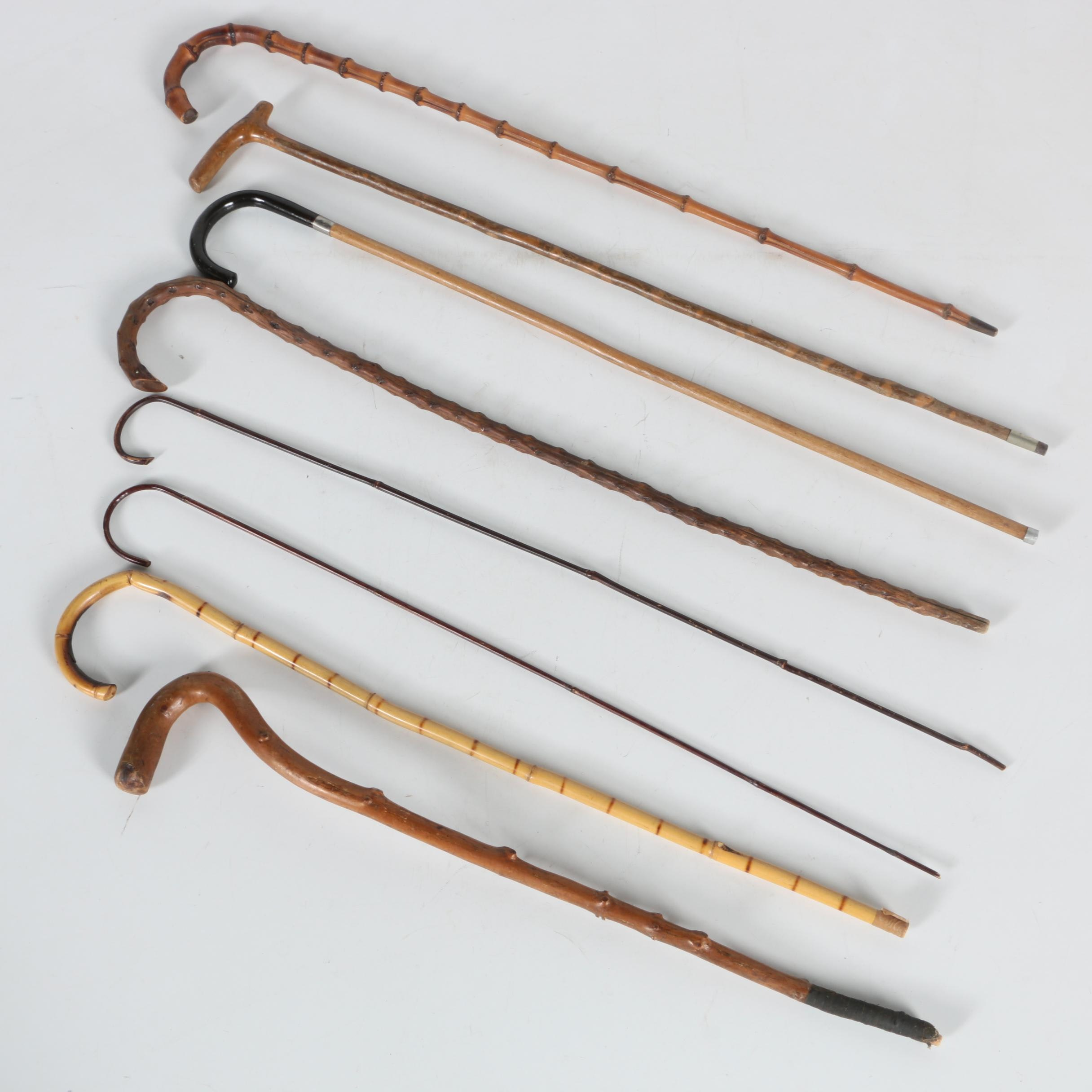 Wooden Cane Collection